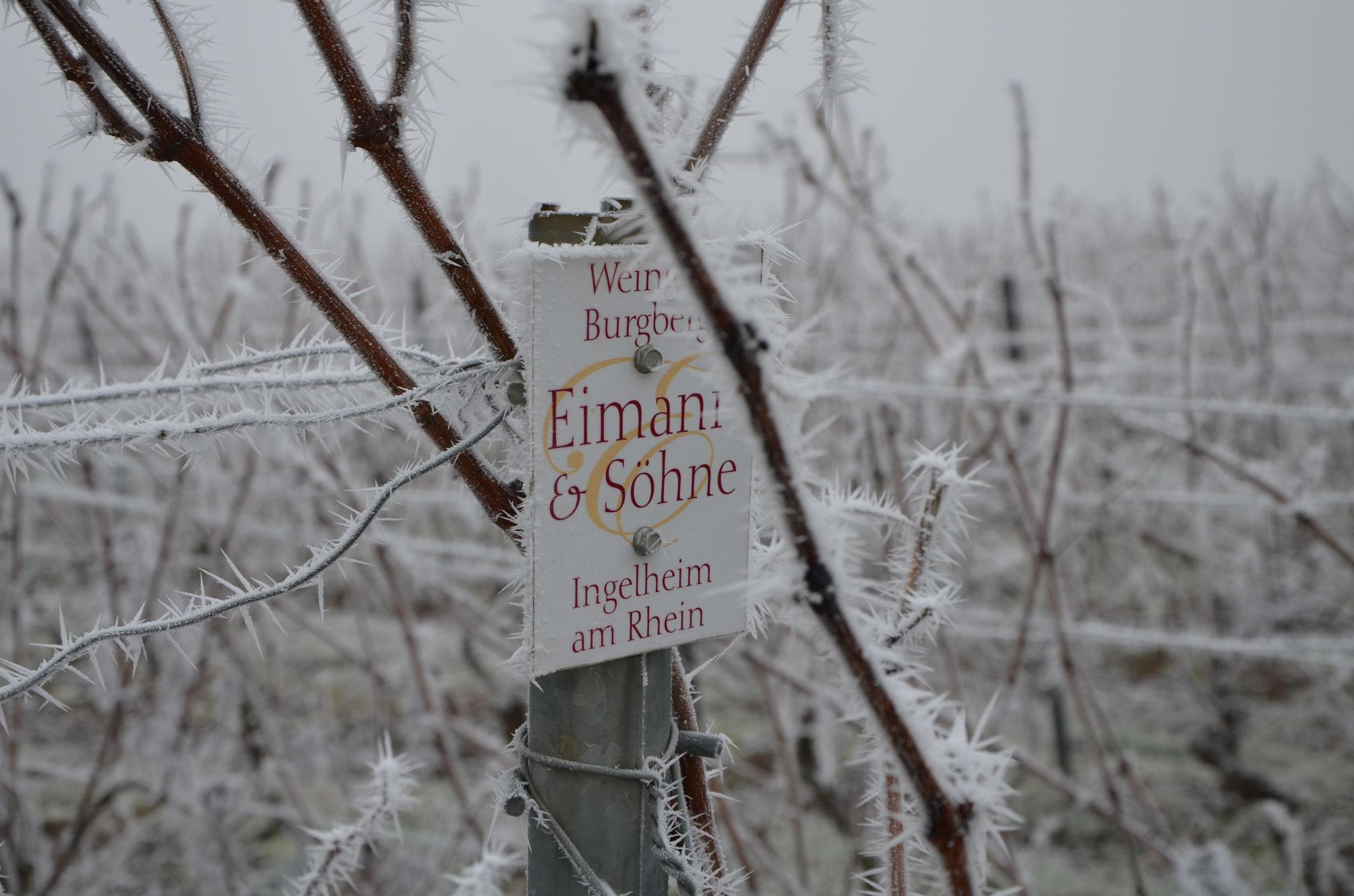 Kalter Winter Dezember 2016