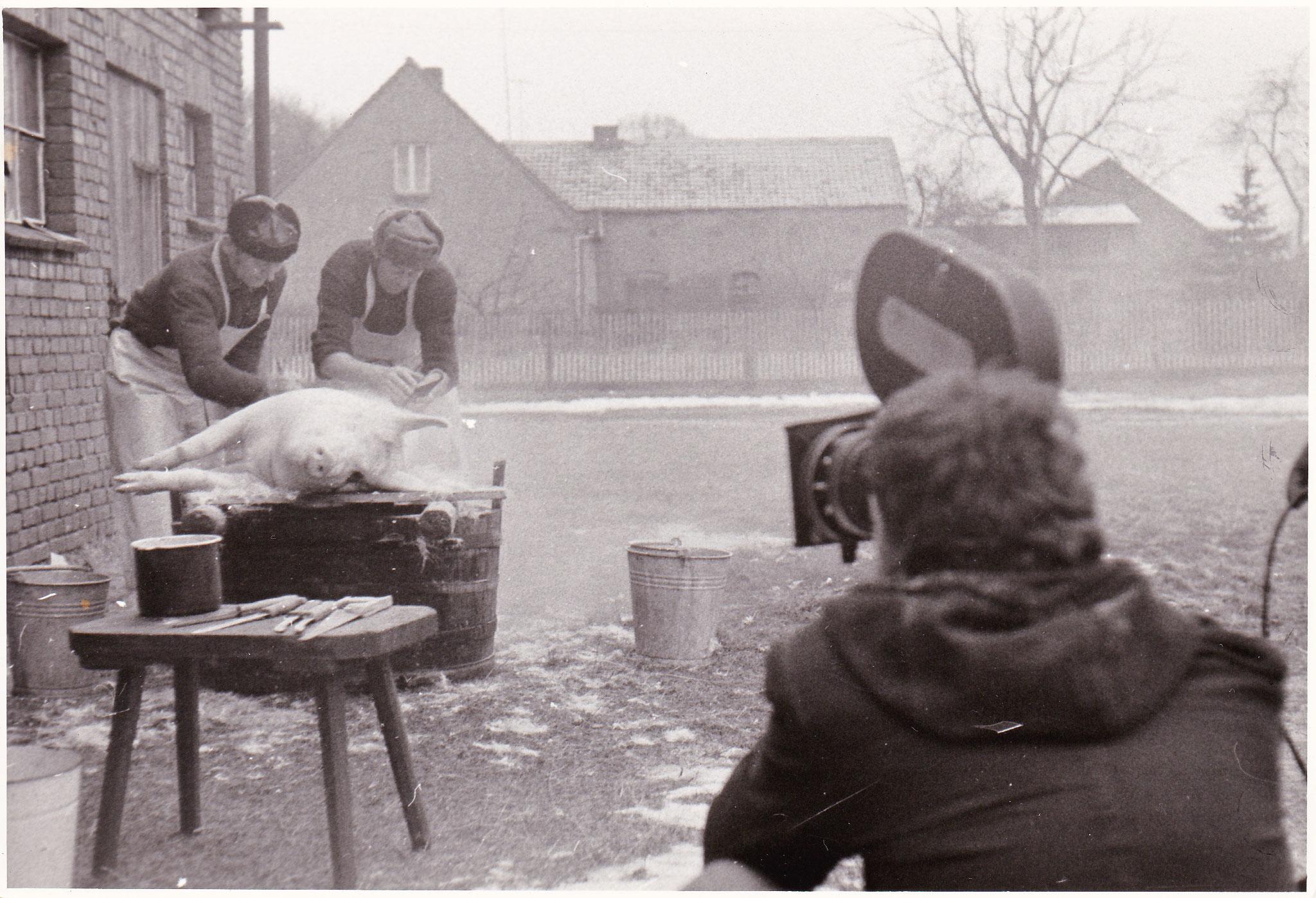 """""""Unter Bauern"""", 1982"""