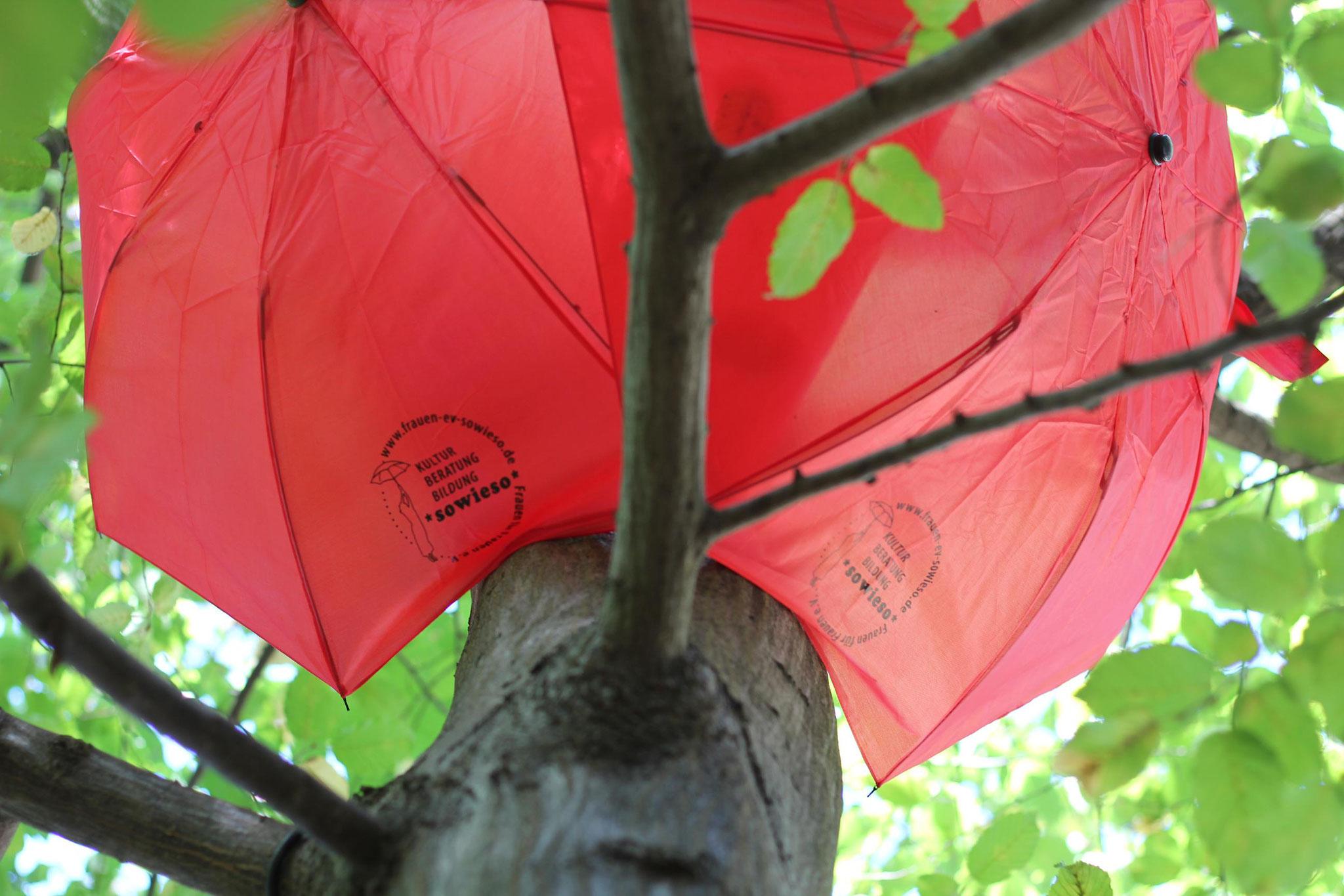 Am Abend verwandelten sich diese Schirme in eine leuchtende Installation.