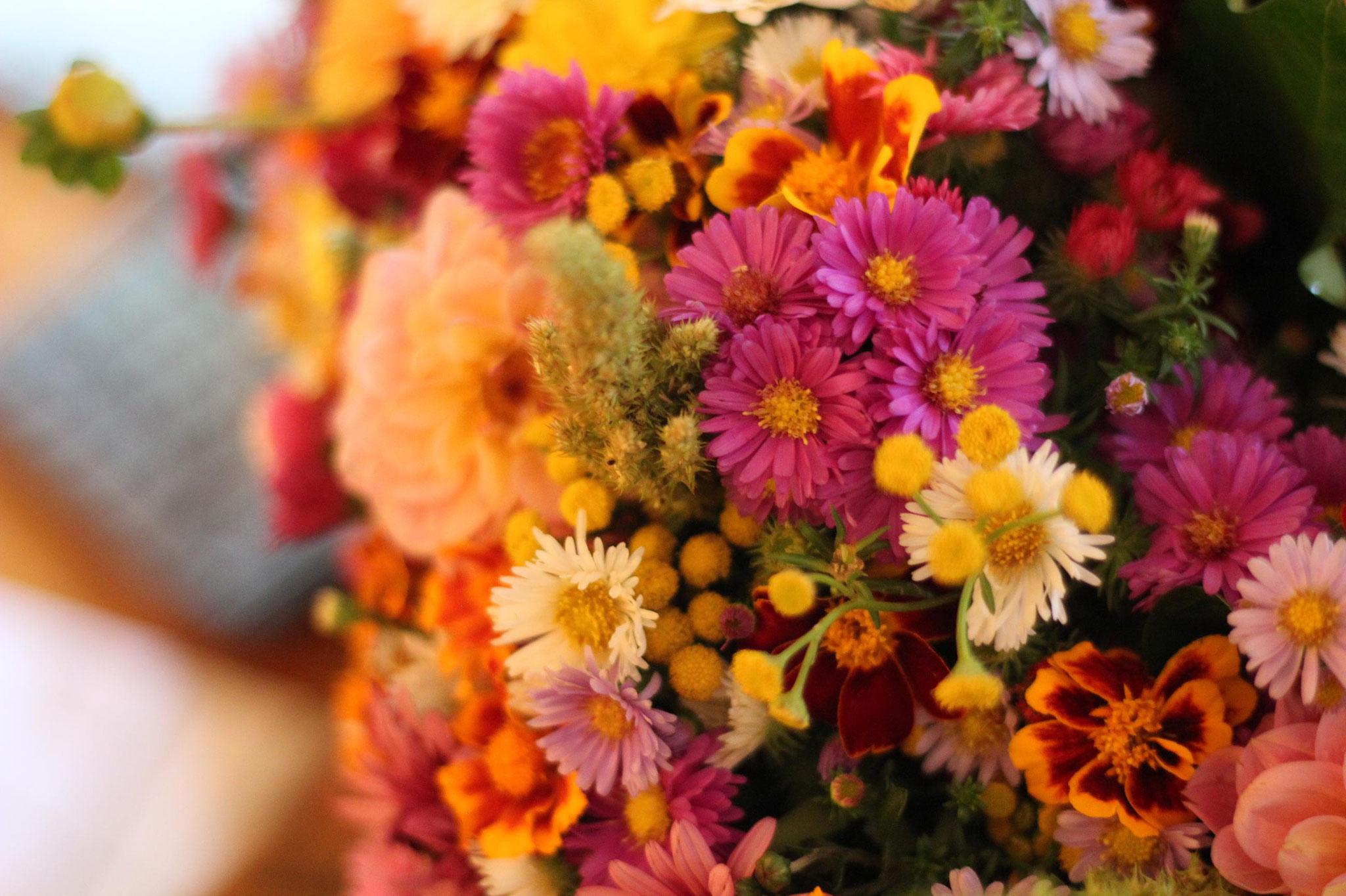 Vielen Dank für die Blumen! ;-)