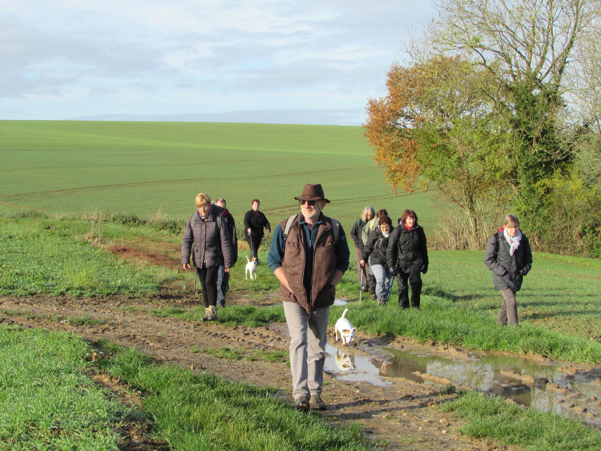 Randonnée nature autour de Martincourt