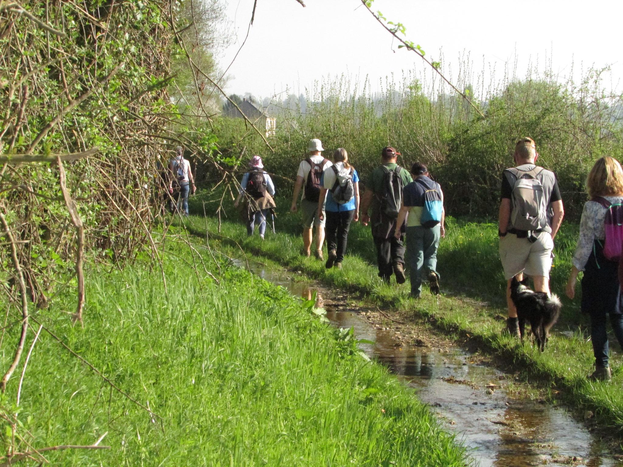 randonnée nature autour de Sully