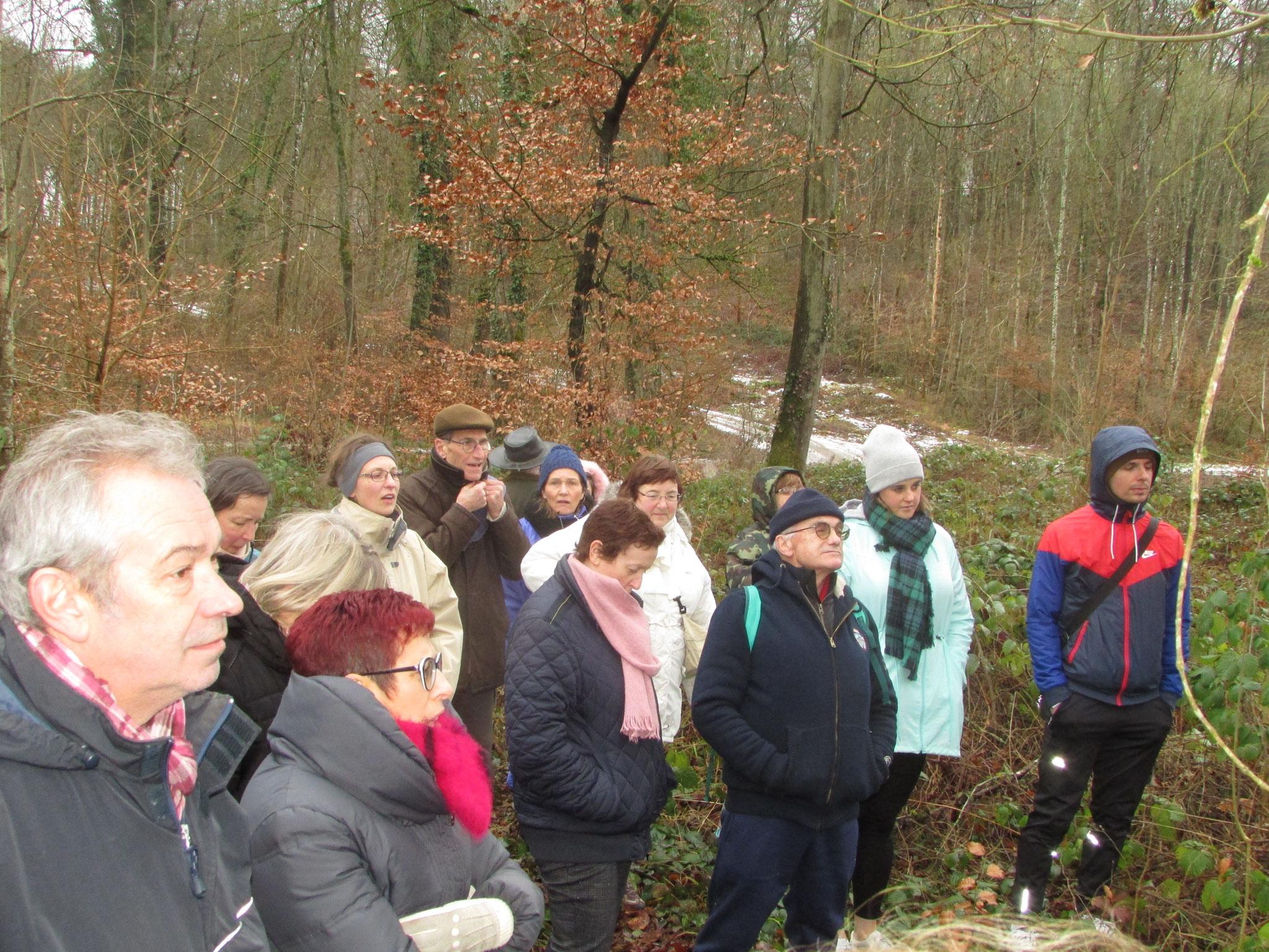 A la découverte du milieu forestier