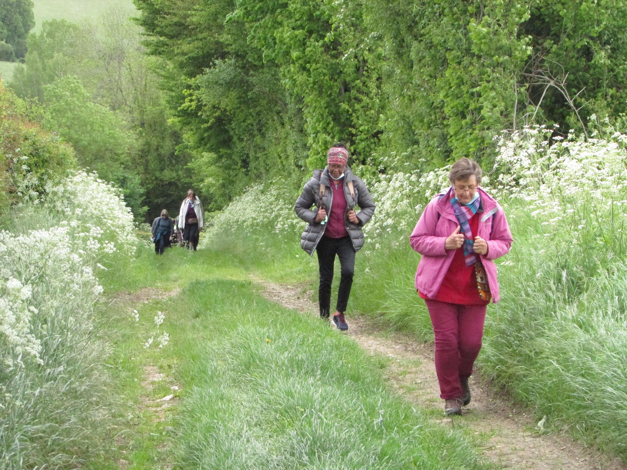 Randonnée nature autour de Morvillers mai 2021
