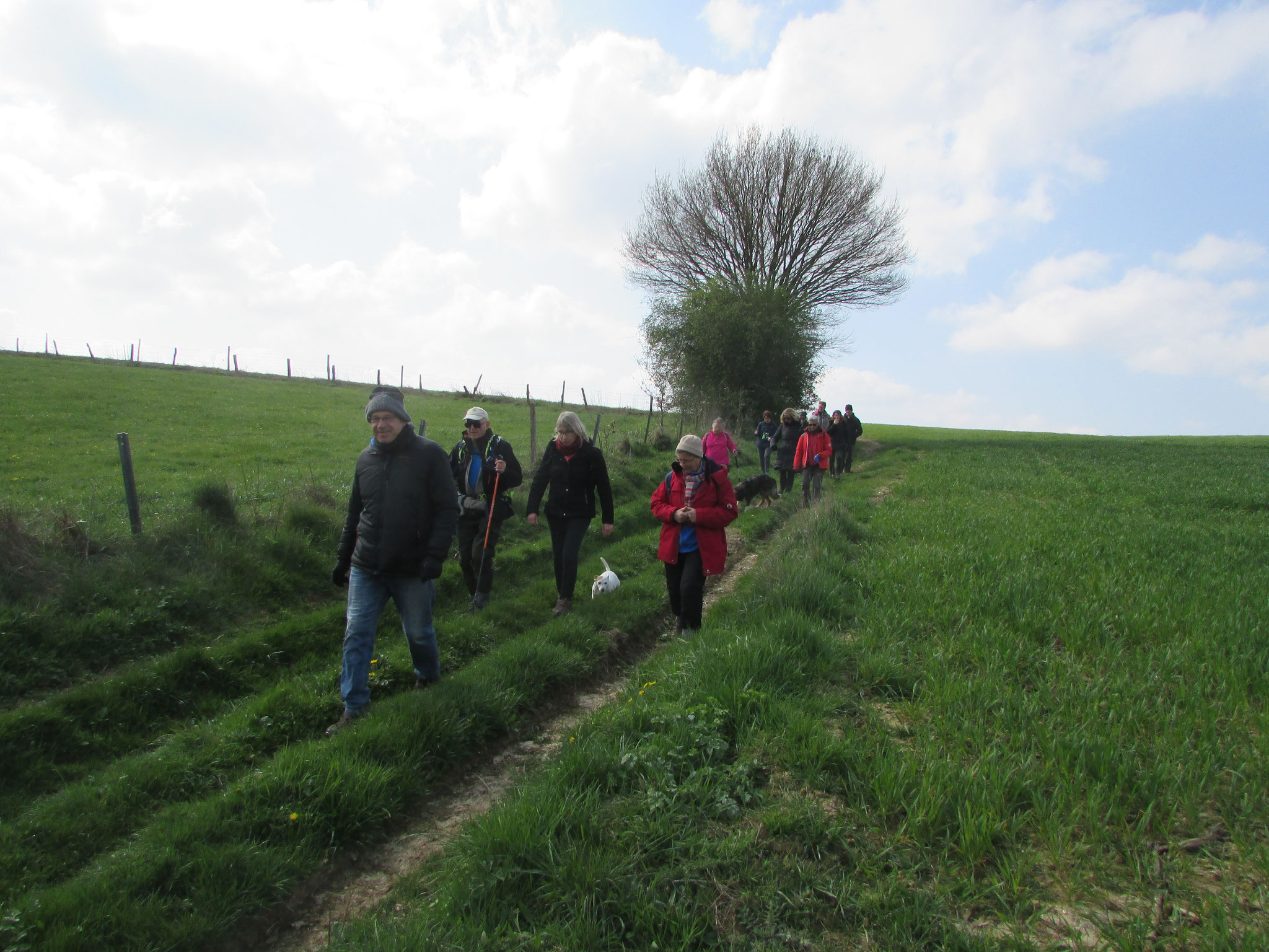 Randonnée nature autour de Thérines