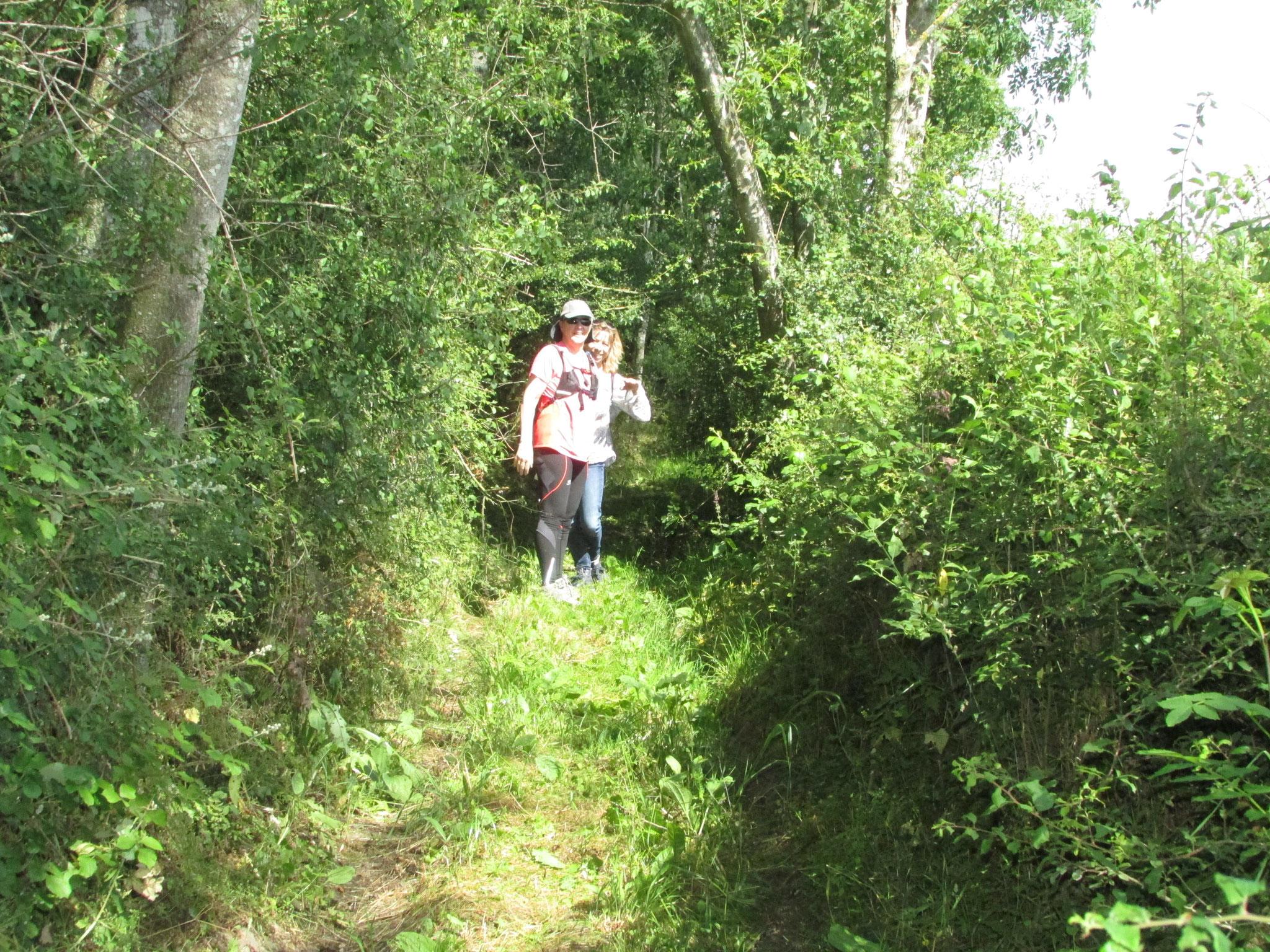 Rando Nature autour de Bazancourt