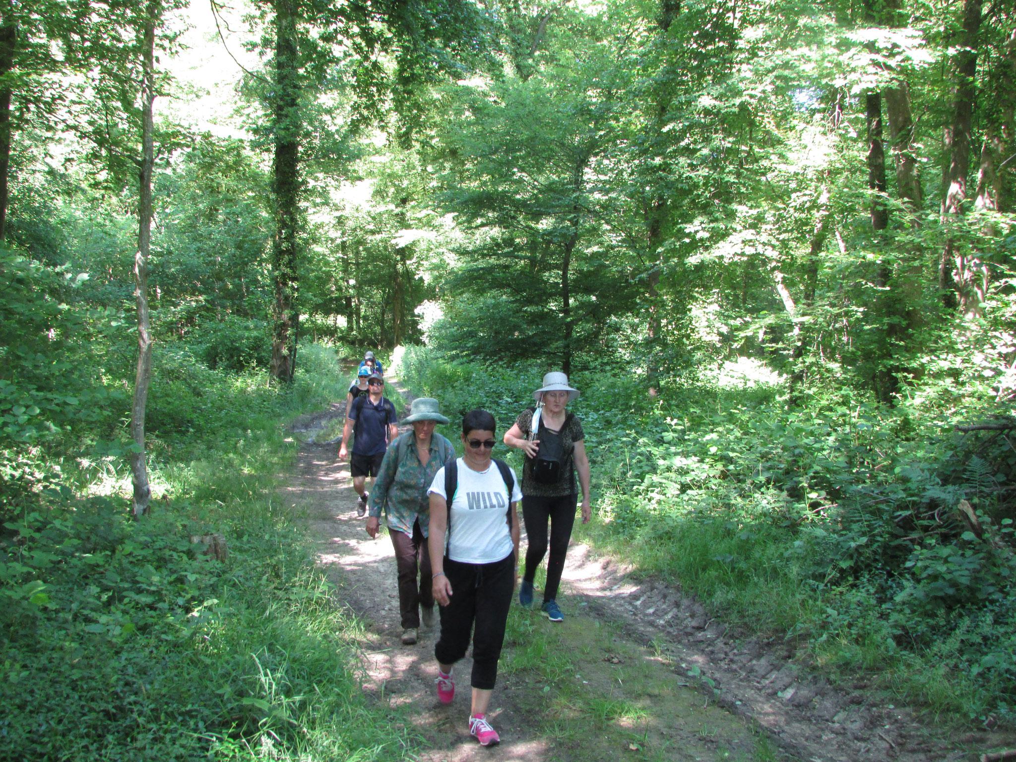 Randonnée nature autour de Martincourt juin 2021