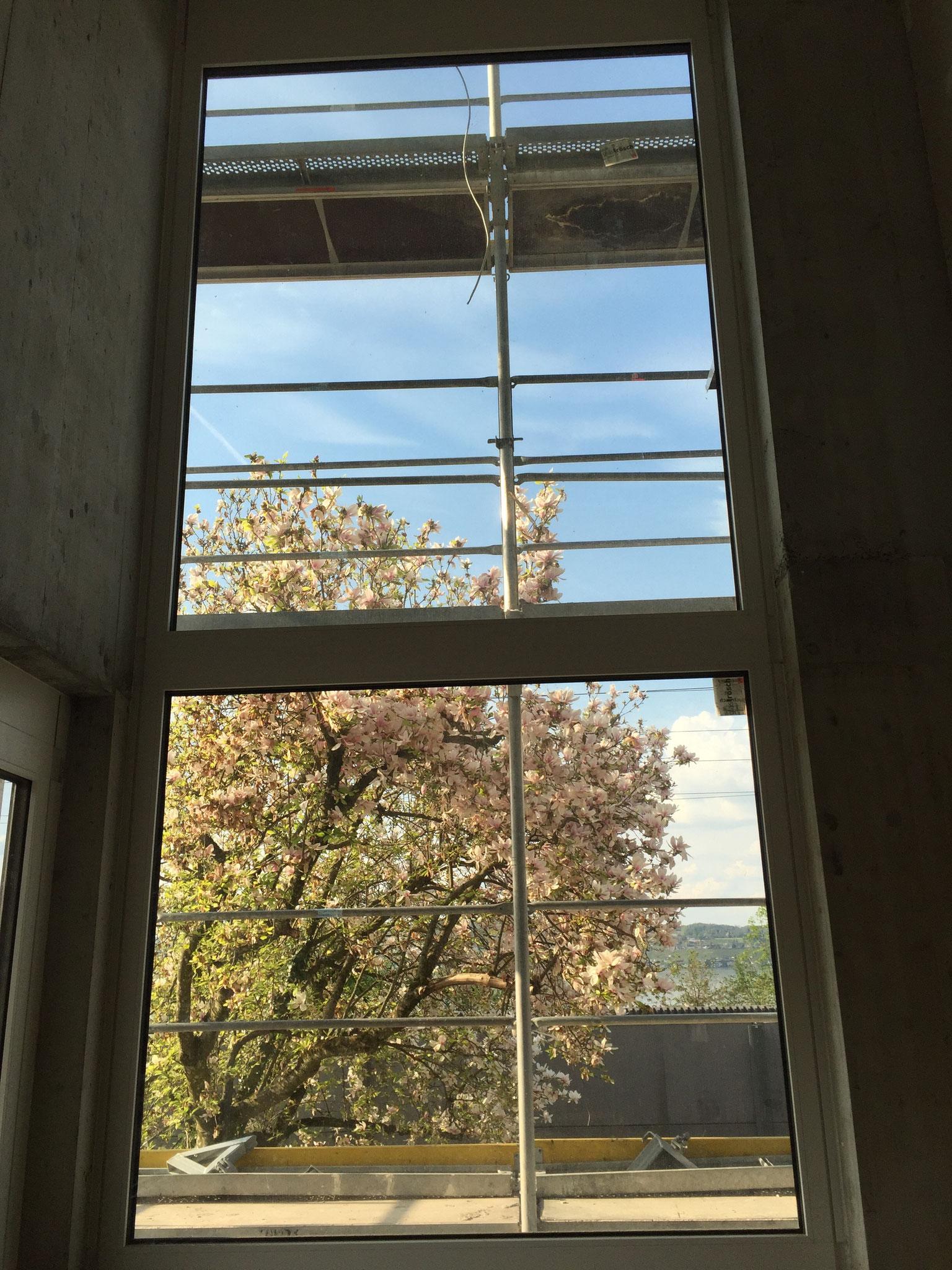 2016-04-22 Doppelgeschossiges Fenster