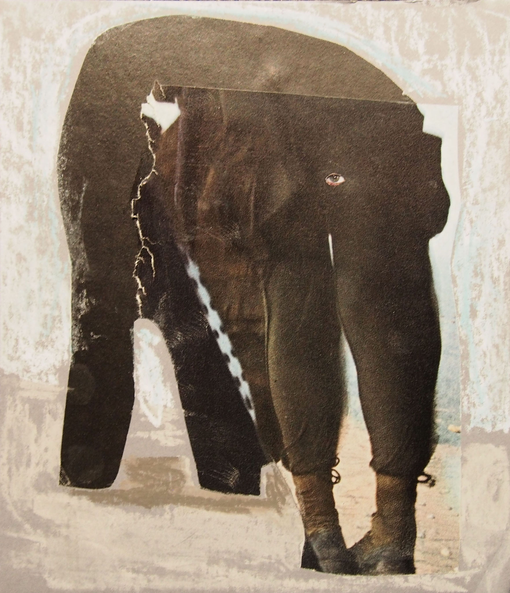"""oliphant' by deborah harris"