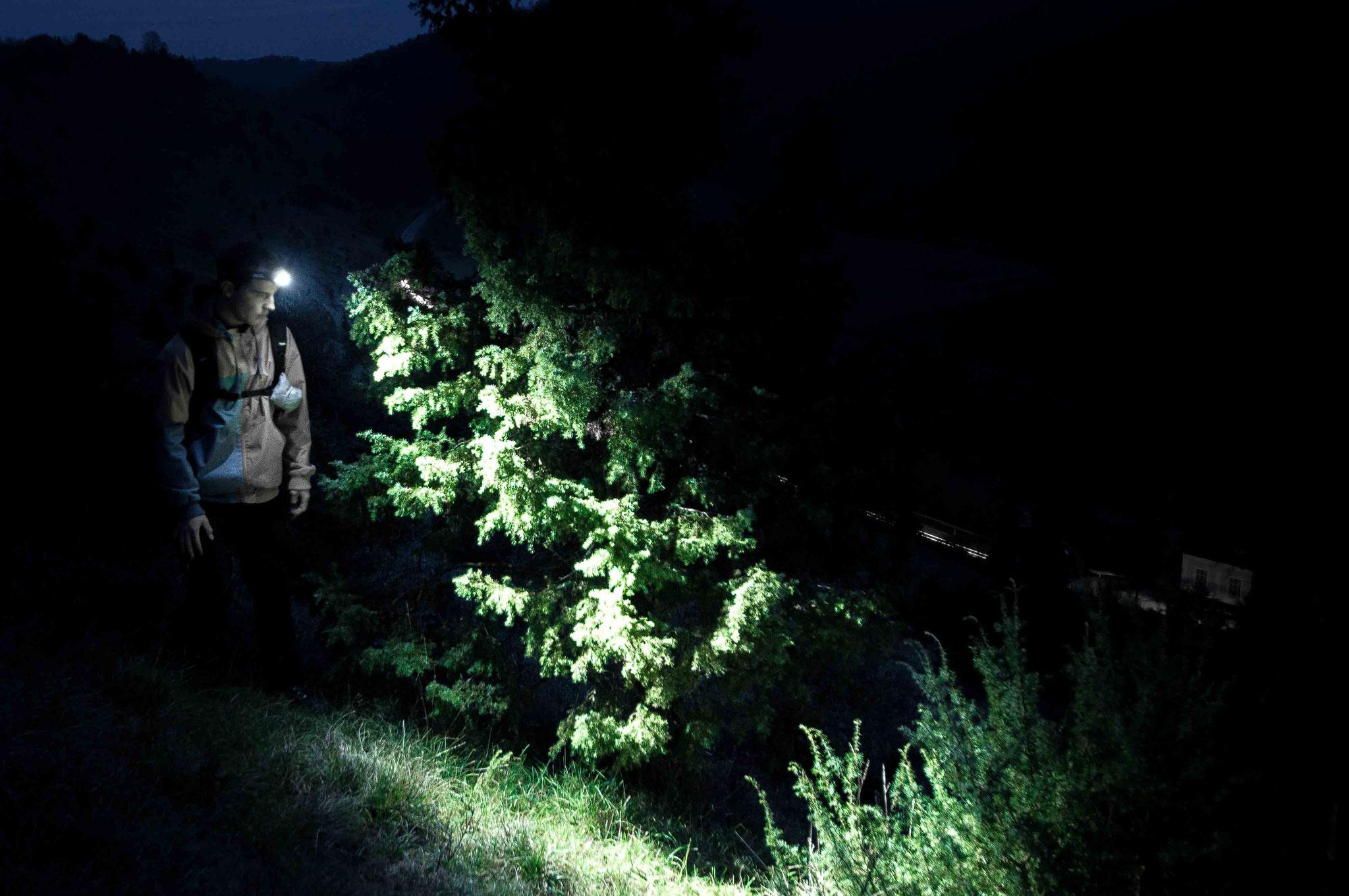 Durch die Nacht wandern; Lautertal bei Buttenhausen