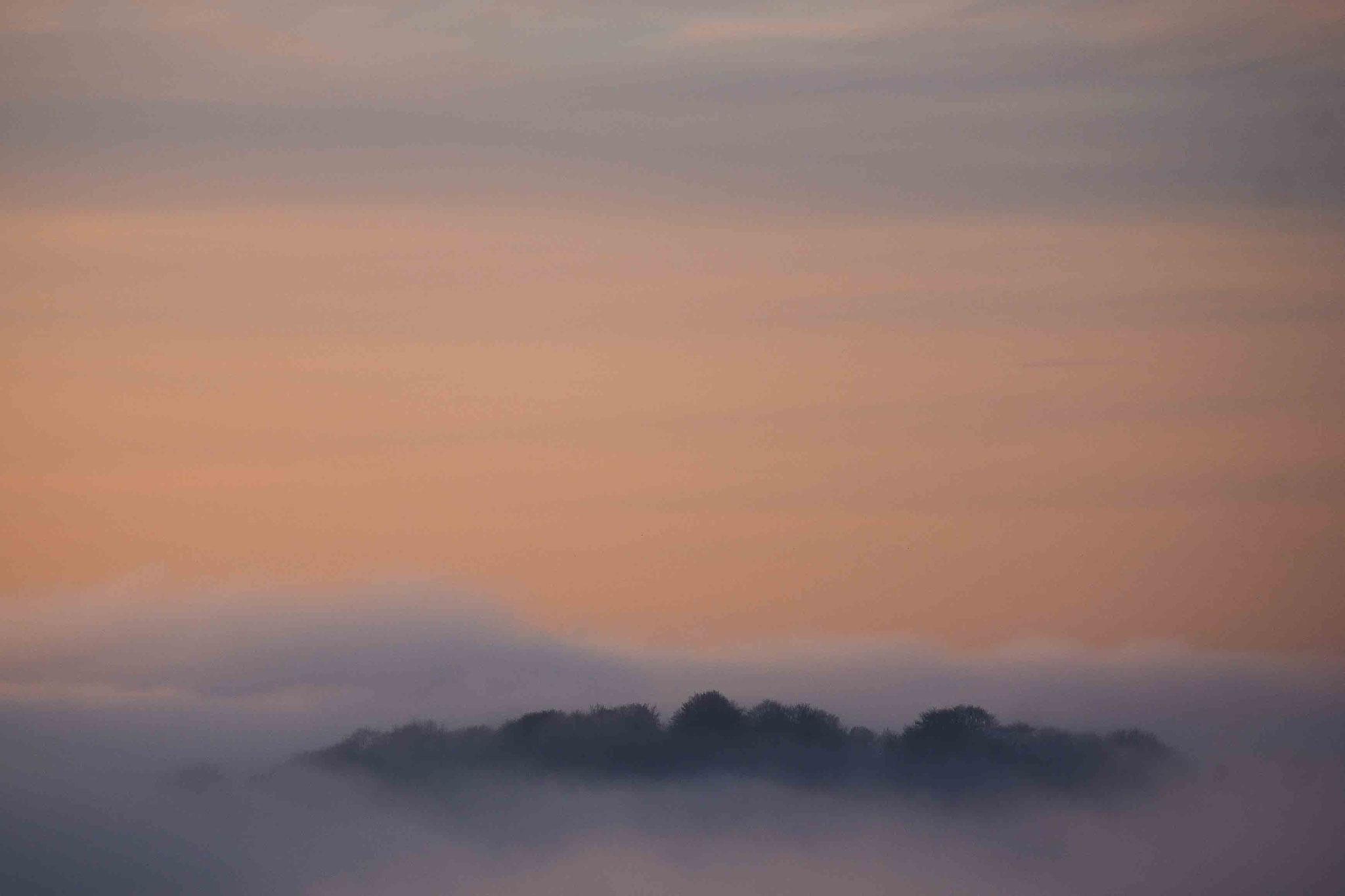 Nebelmeer zur Morgenstunde; Schwäbische Alb