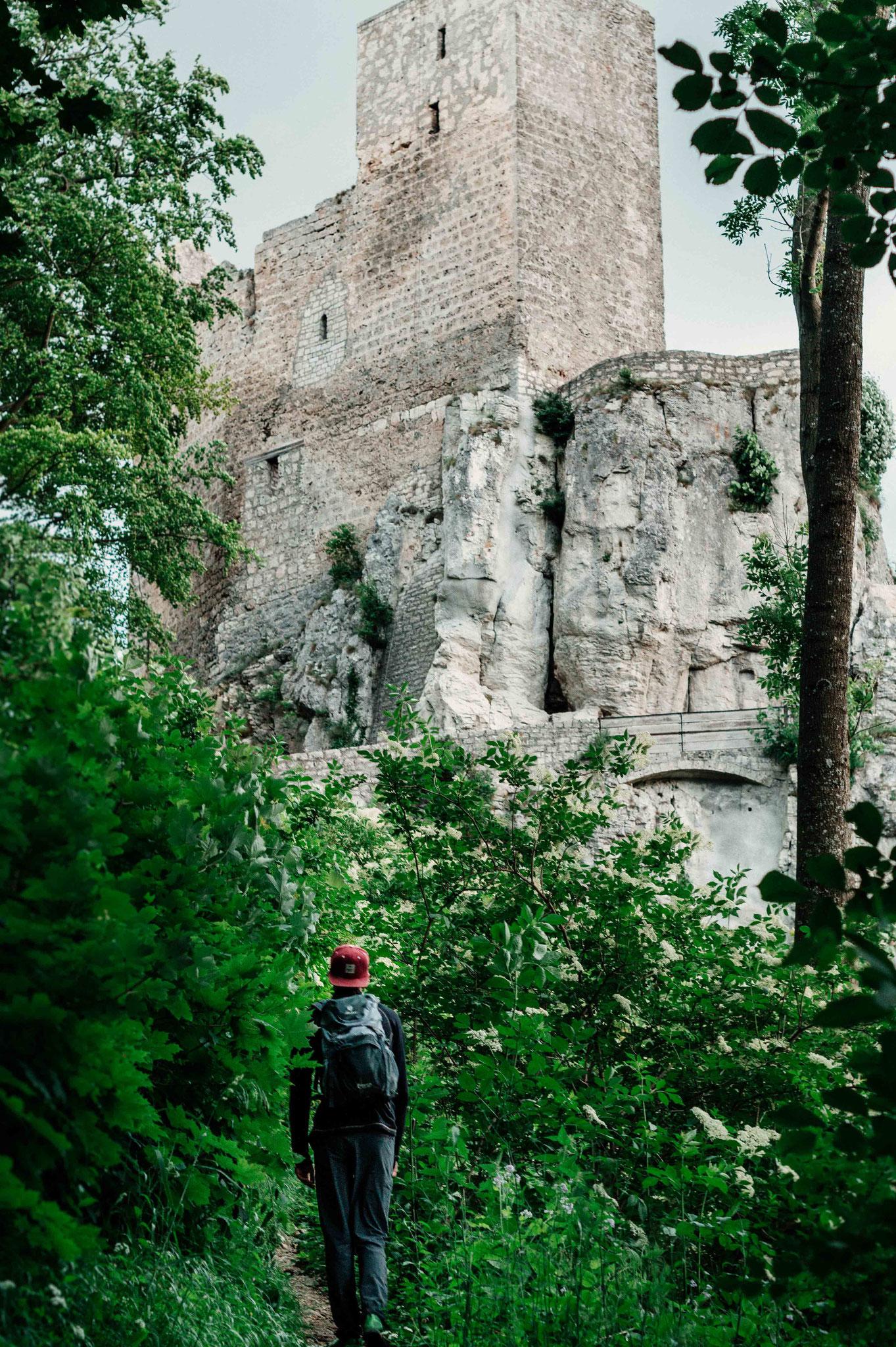 Erklimm die Burg; Ruine Reußenstein