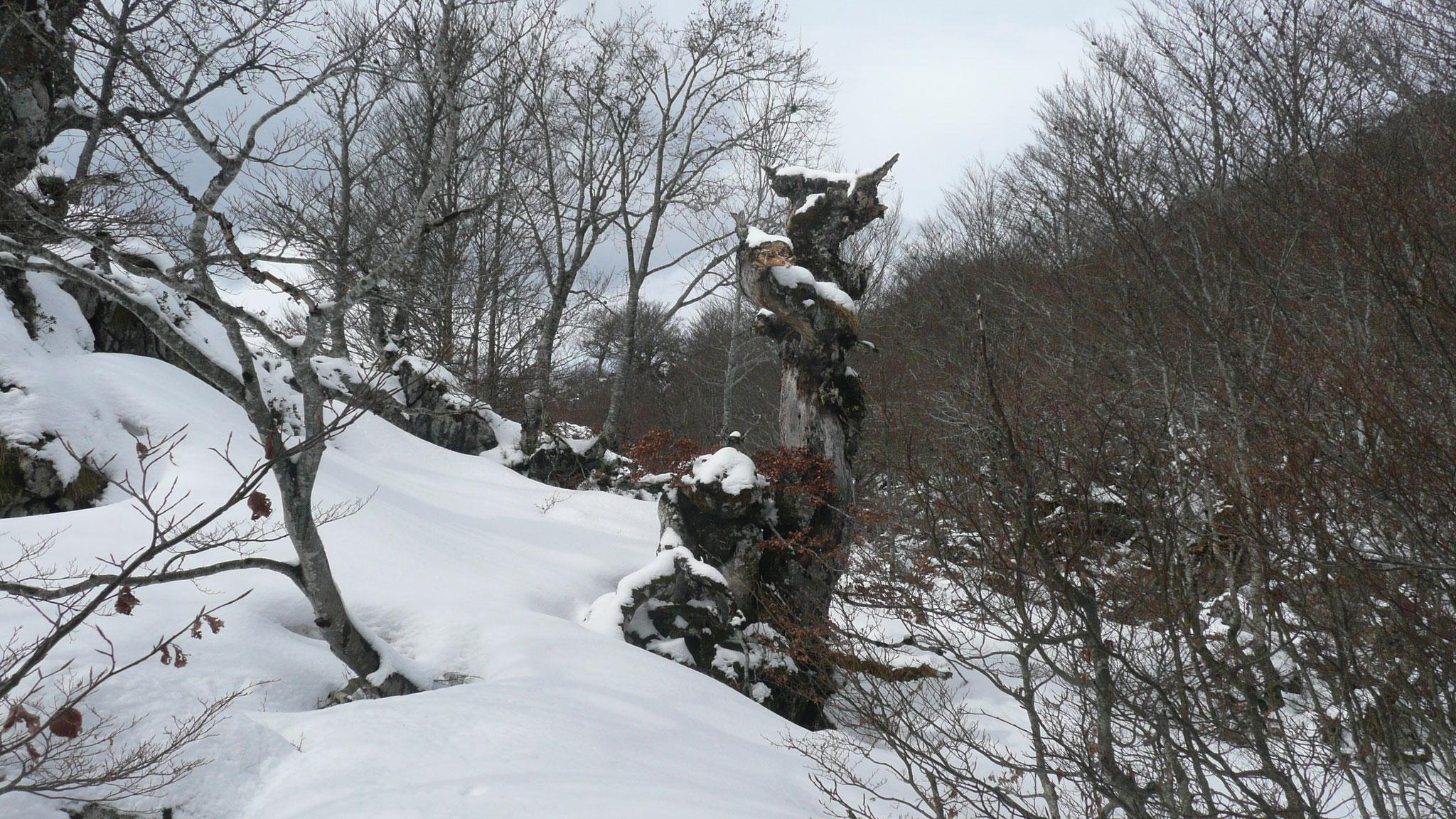 Une sculpture improbable