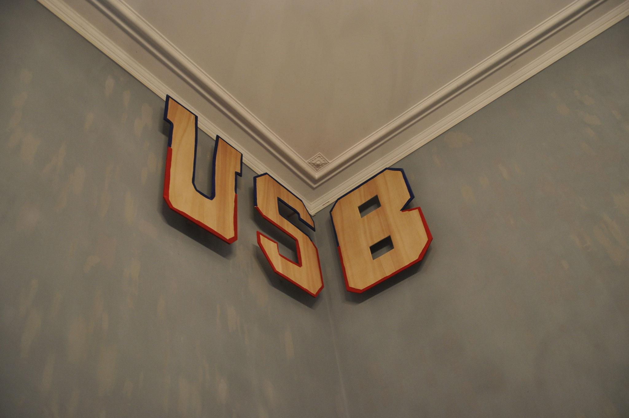 USB, 2019, Acryl auf Pappelpressholz