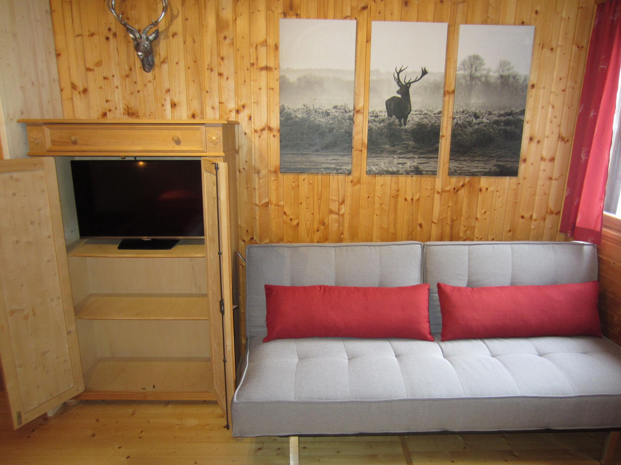 große Couch und Flat-TV