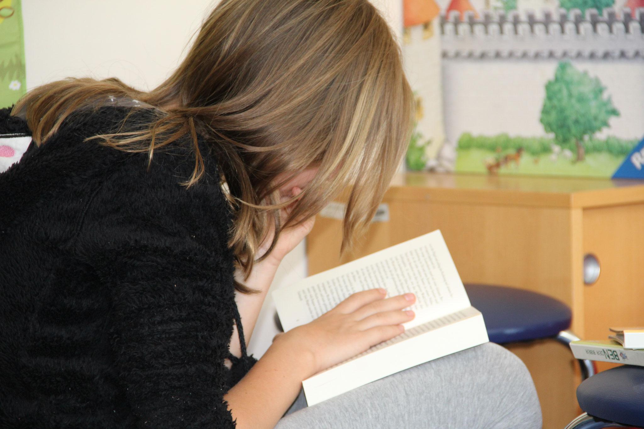Beim Lesen und Stöbern 3
