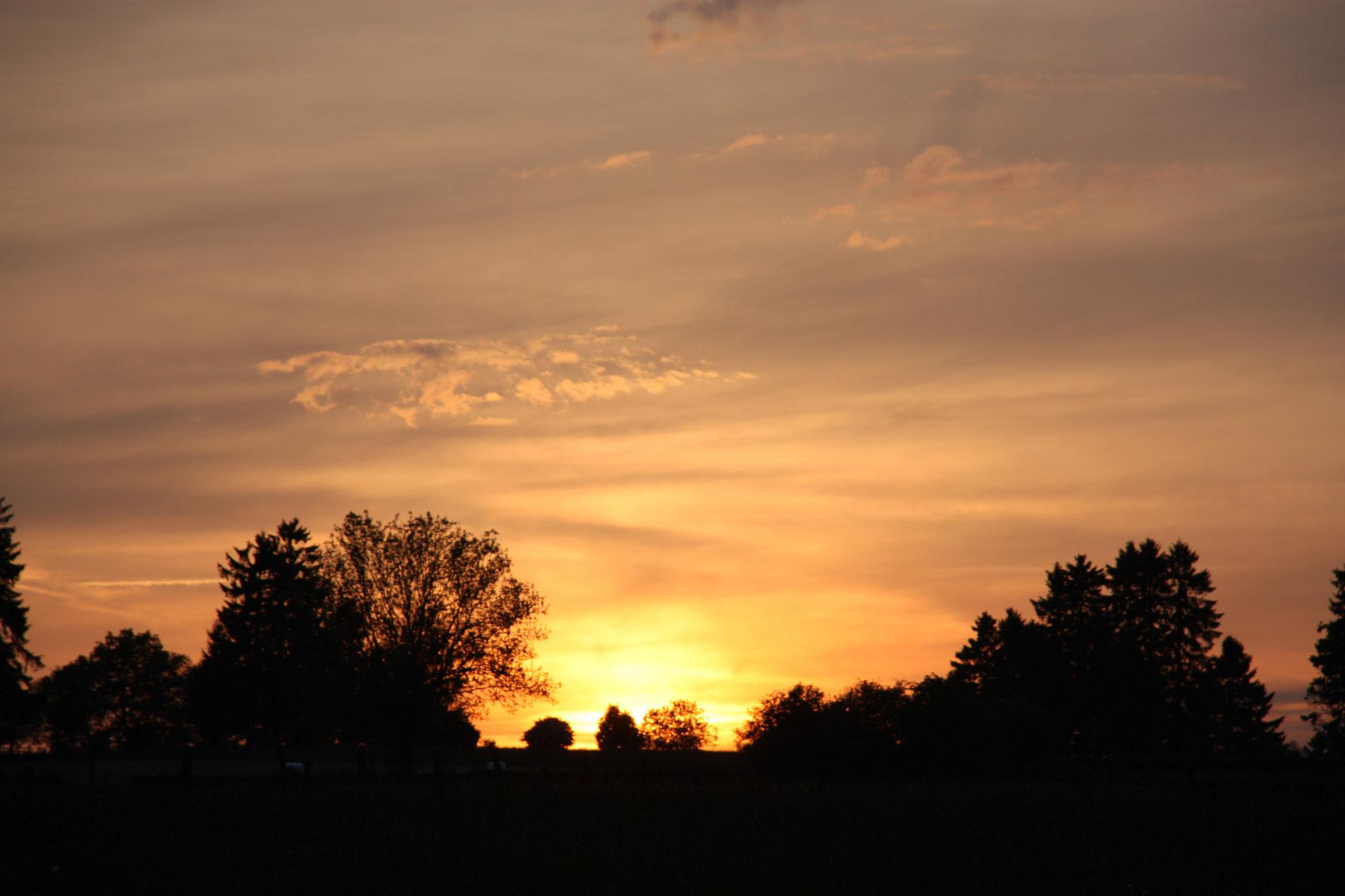 Sonnenuntergang auf der Terrasse  |   Zonsondergang op het terras