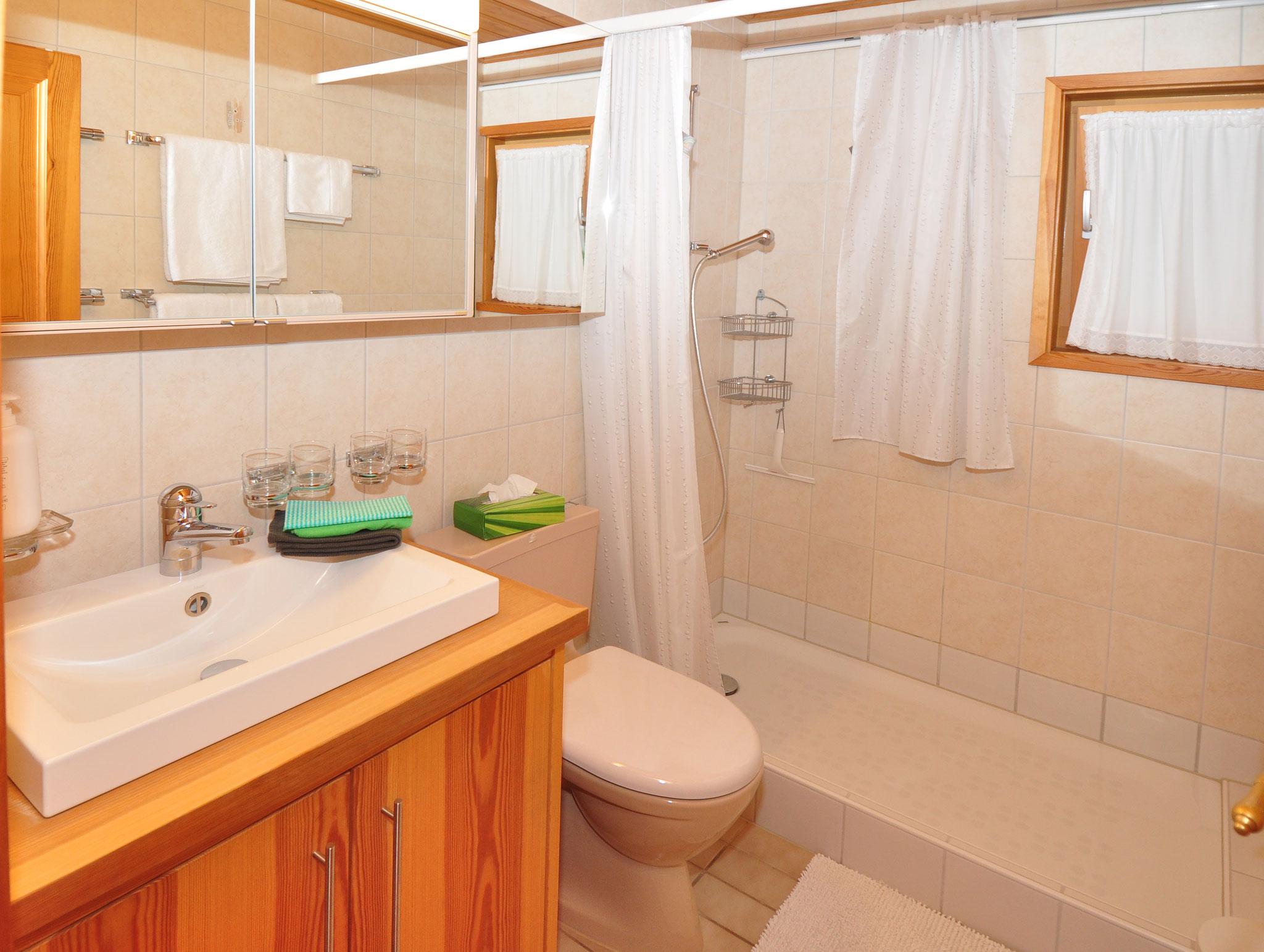 Das funktionelle Bad mit grosser Duschwanne und WC