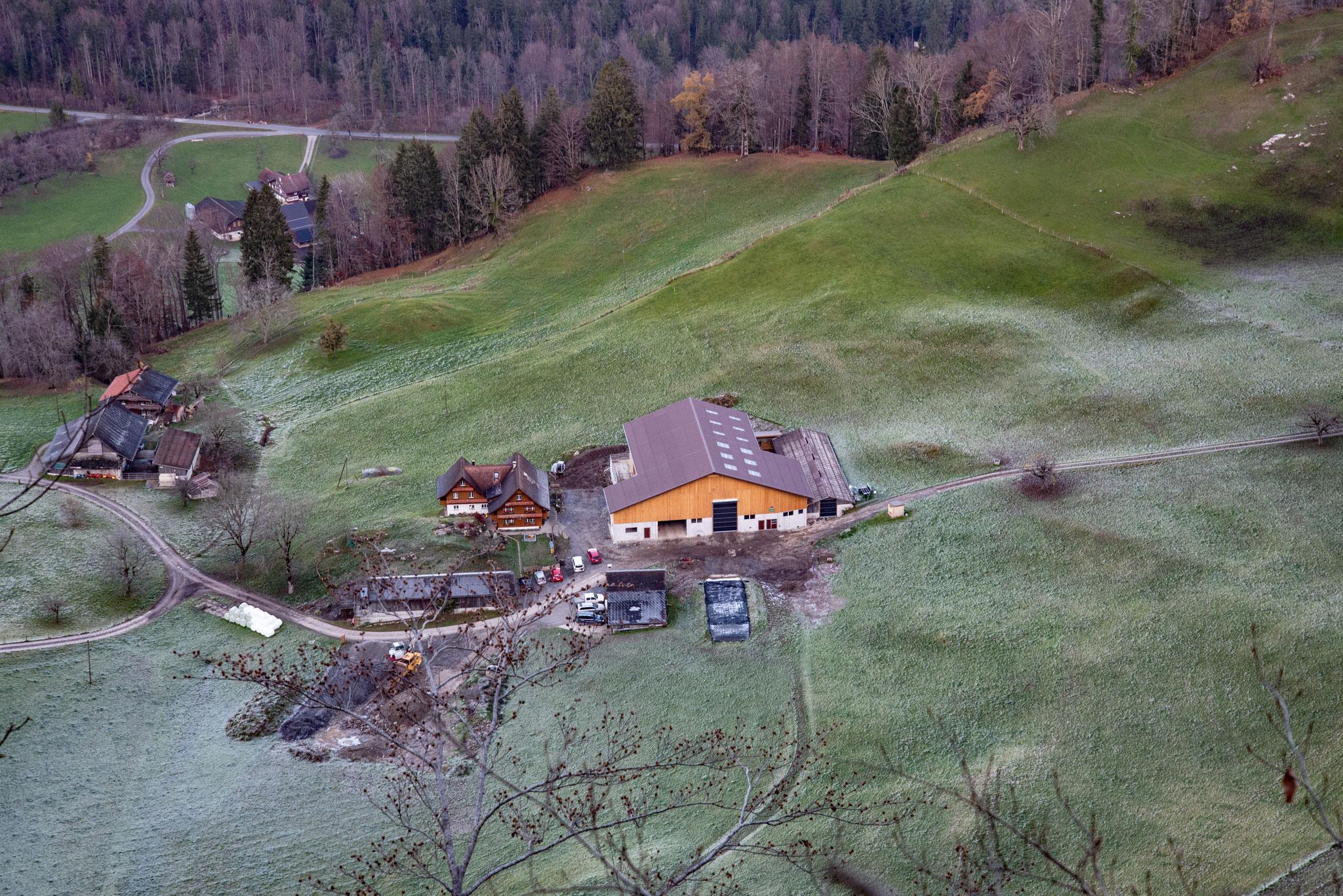 Biohof-Emmetti mit neuem Stall - November 2020