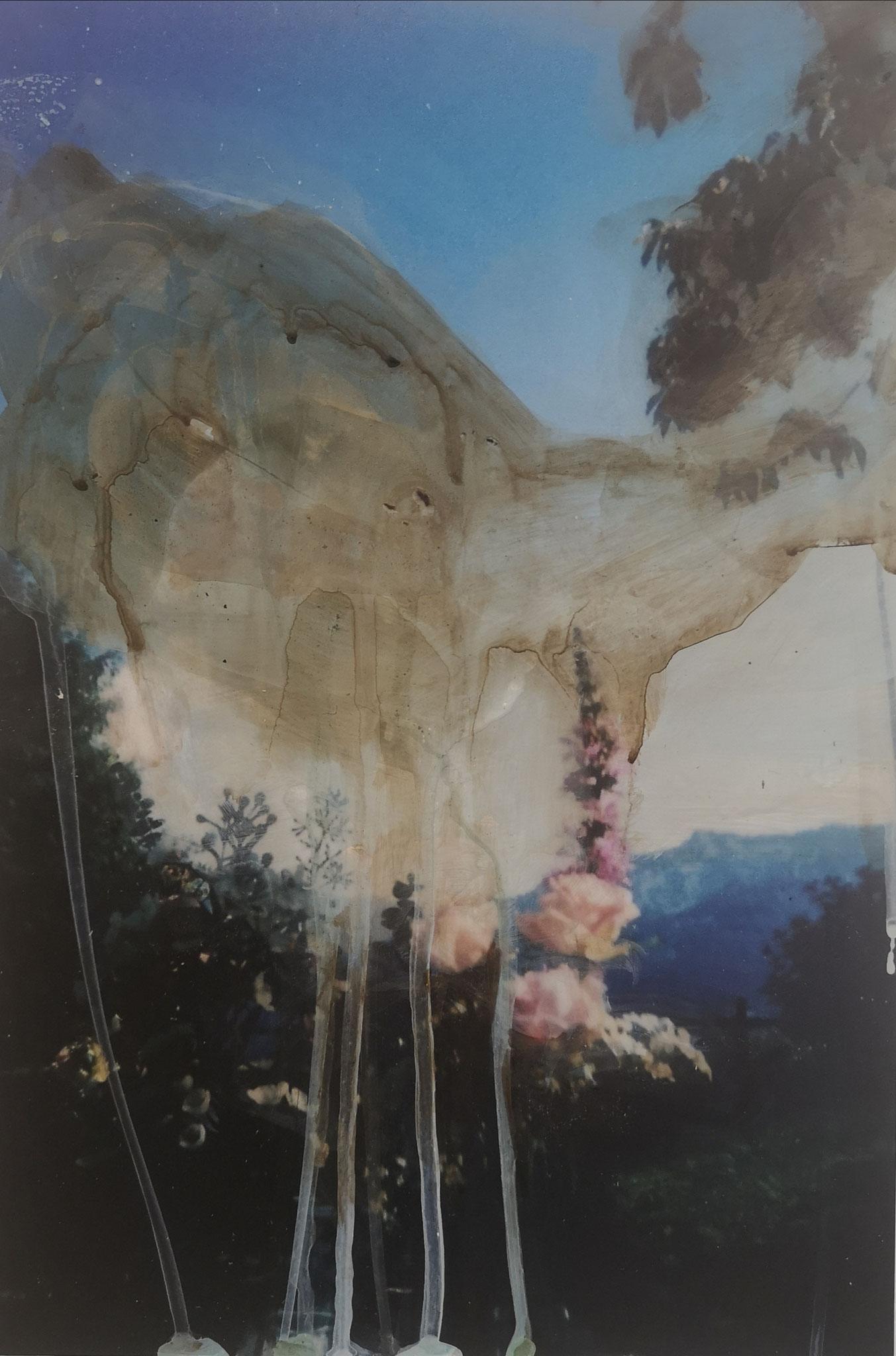 Genius Loci, Acryl auf Fotografie, Alu-Dibond, 30 x 20 cm, 2020