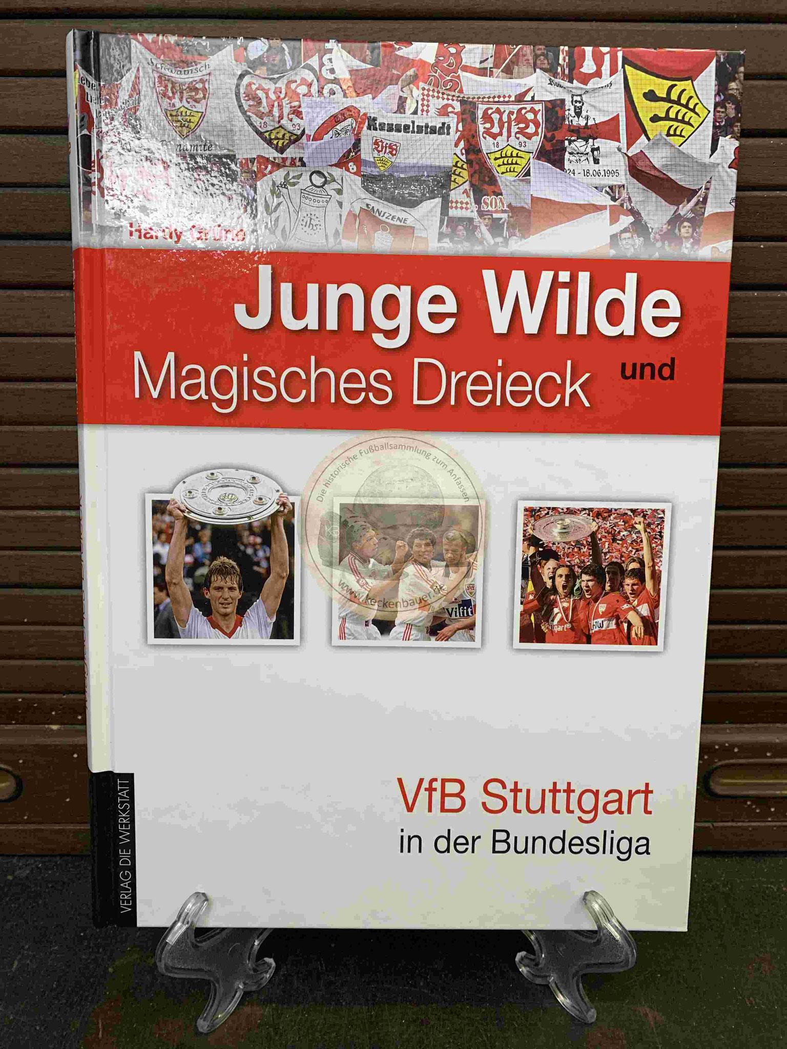 Junge Wilde und Magisches Dreieck VfB Stuttgart in der Bundesliga aus dem Jahr 2012