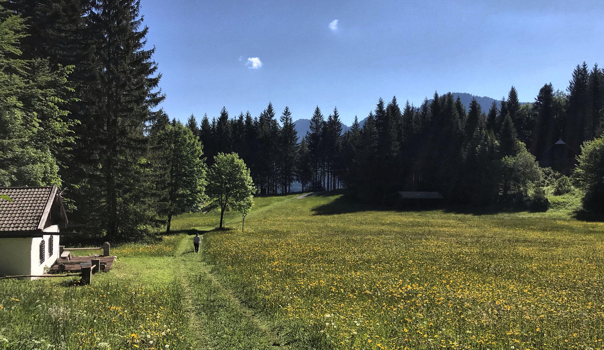 Etappe O07: Duft - Kirchwald - Nußdorf