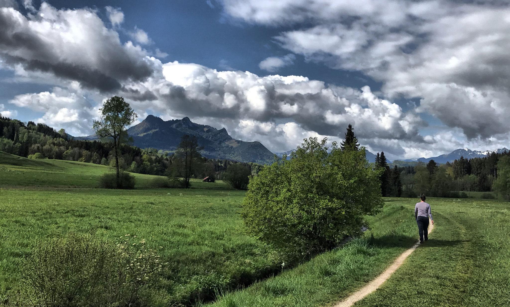 Etappe O06: Törwang - Samerberger Filze - Duft