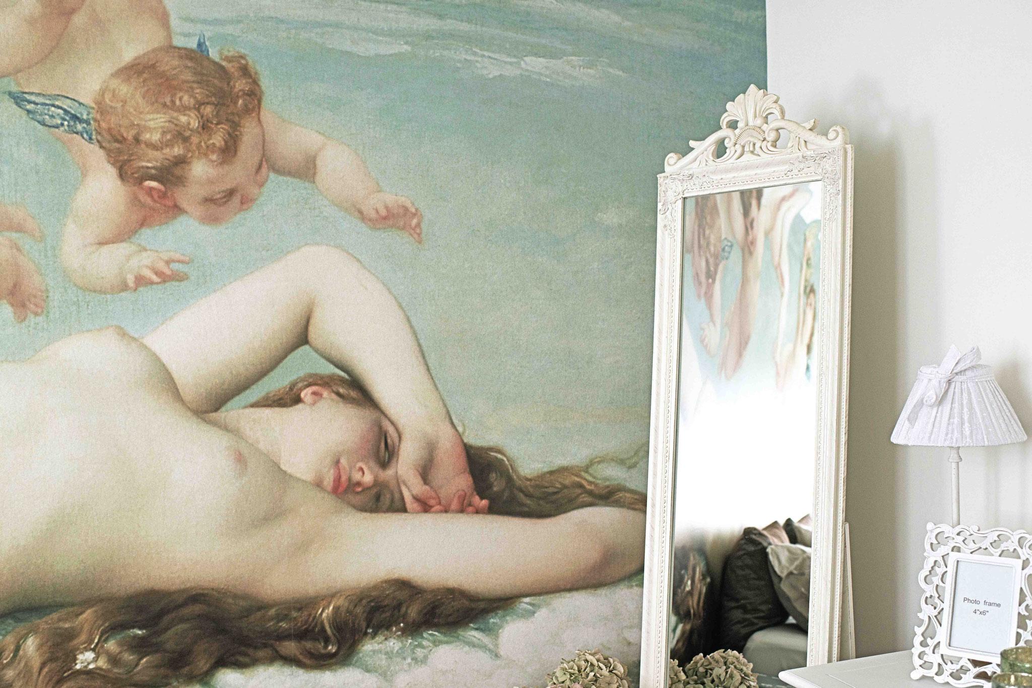 Zimmer Venus