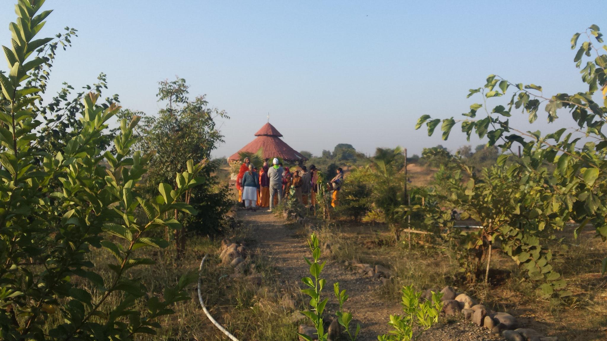 zum Siva - Tempel