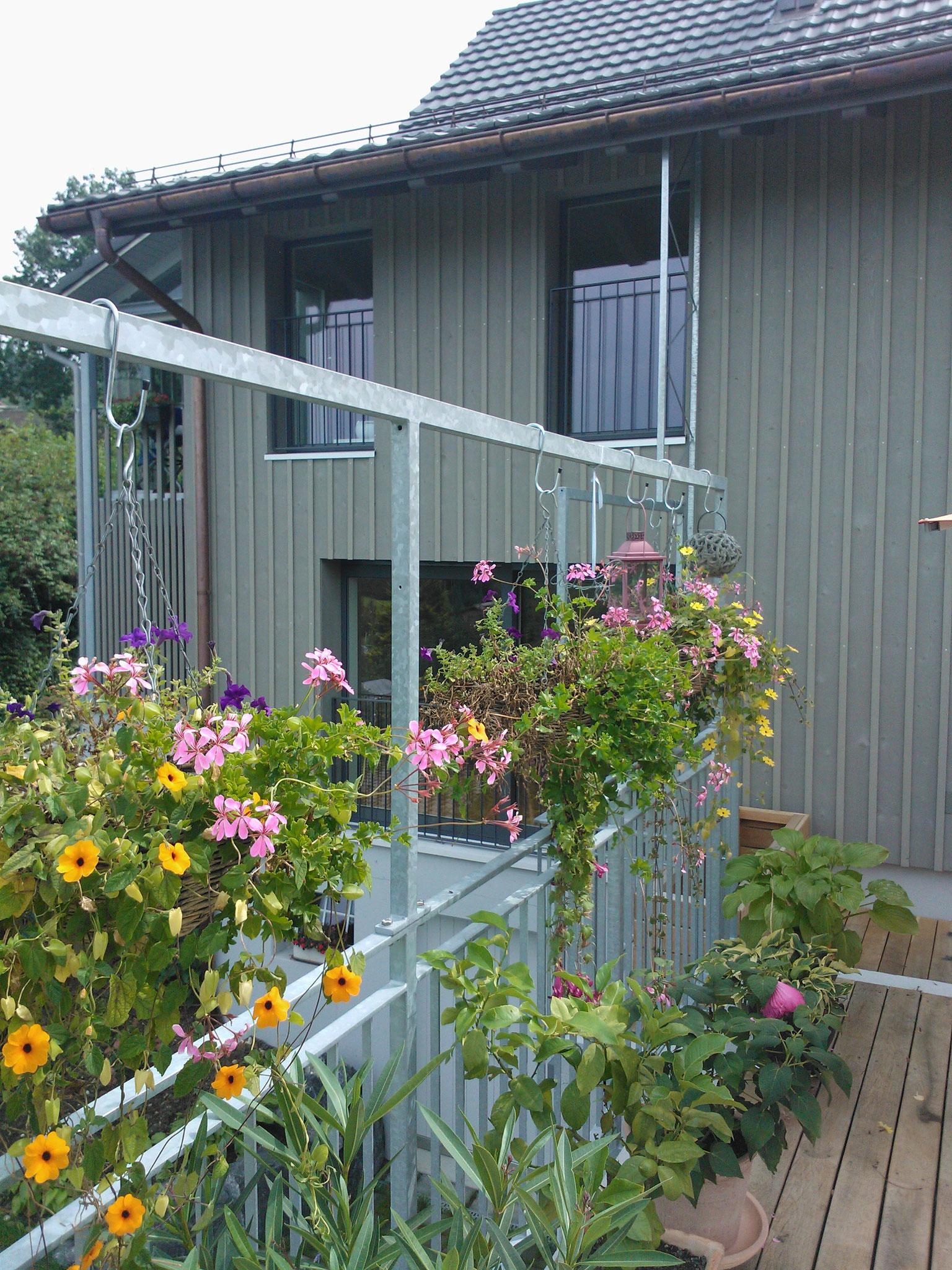 Rekonstruktion Scheune / Wohnungseinbau, 8489 Wildberg/ZH
