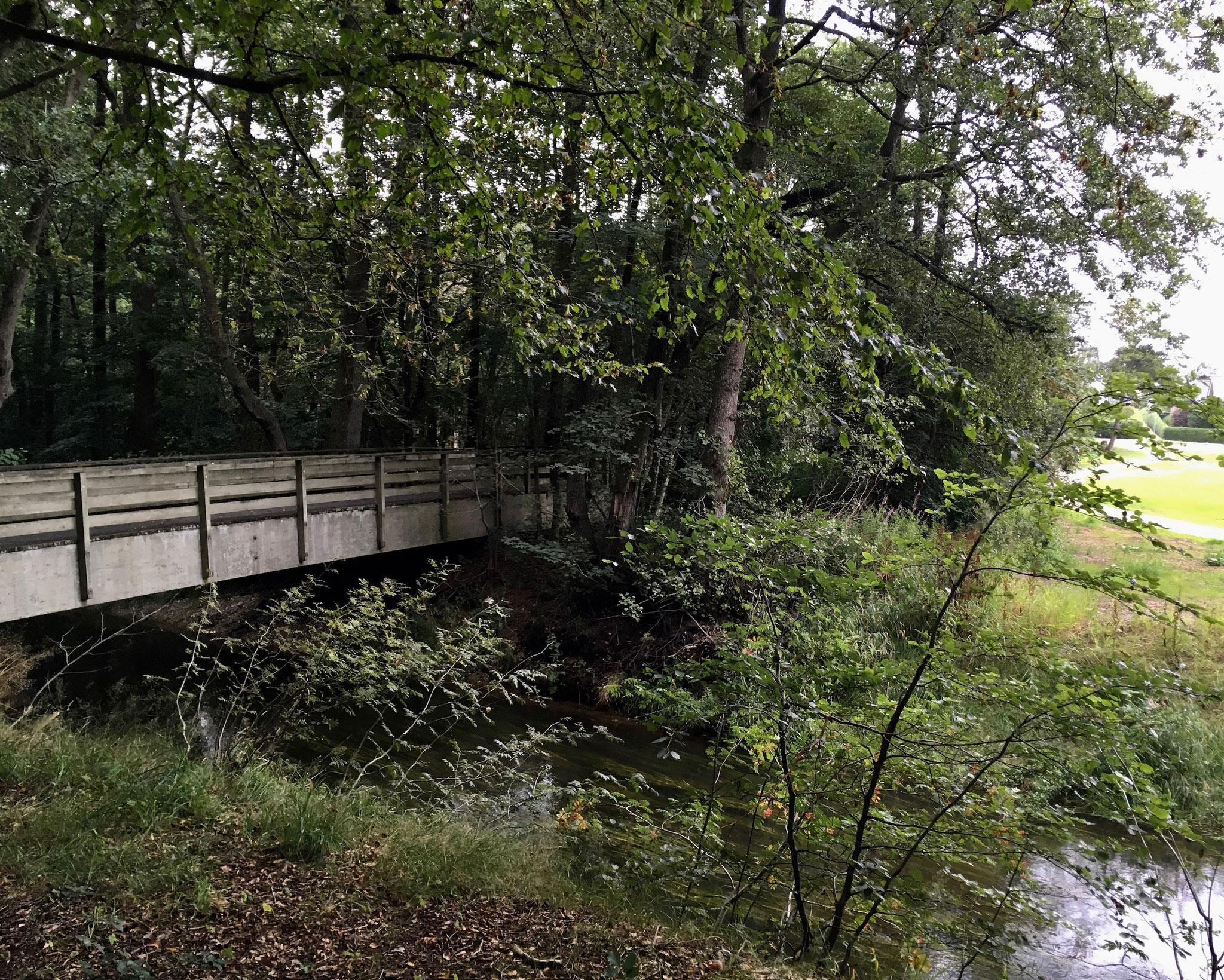 Kurz vorm Ziel noch 2 sehr schöne Holzbrücken...