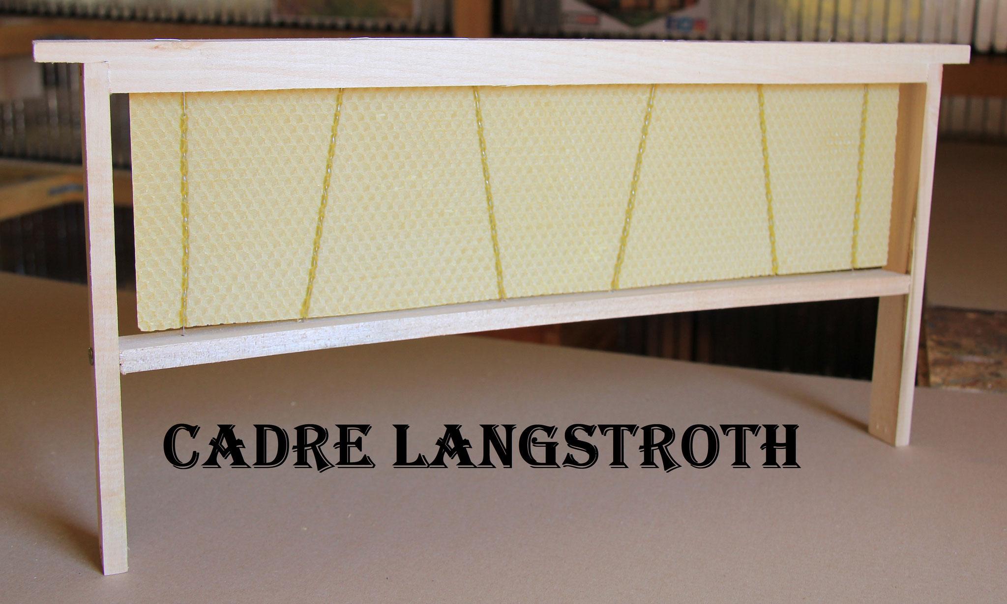 Cadre à mâles / cadre d'élevage Langstroth droit corps fils inox verticaux gaufré cire d'opercules