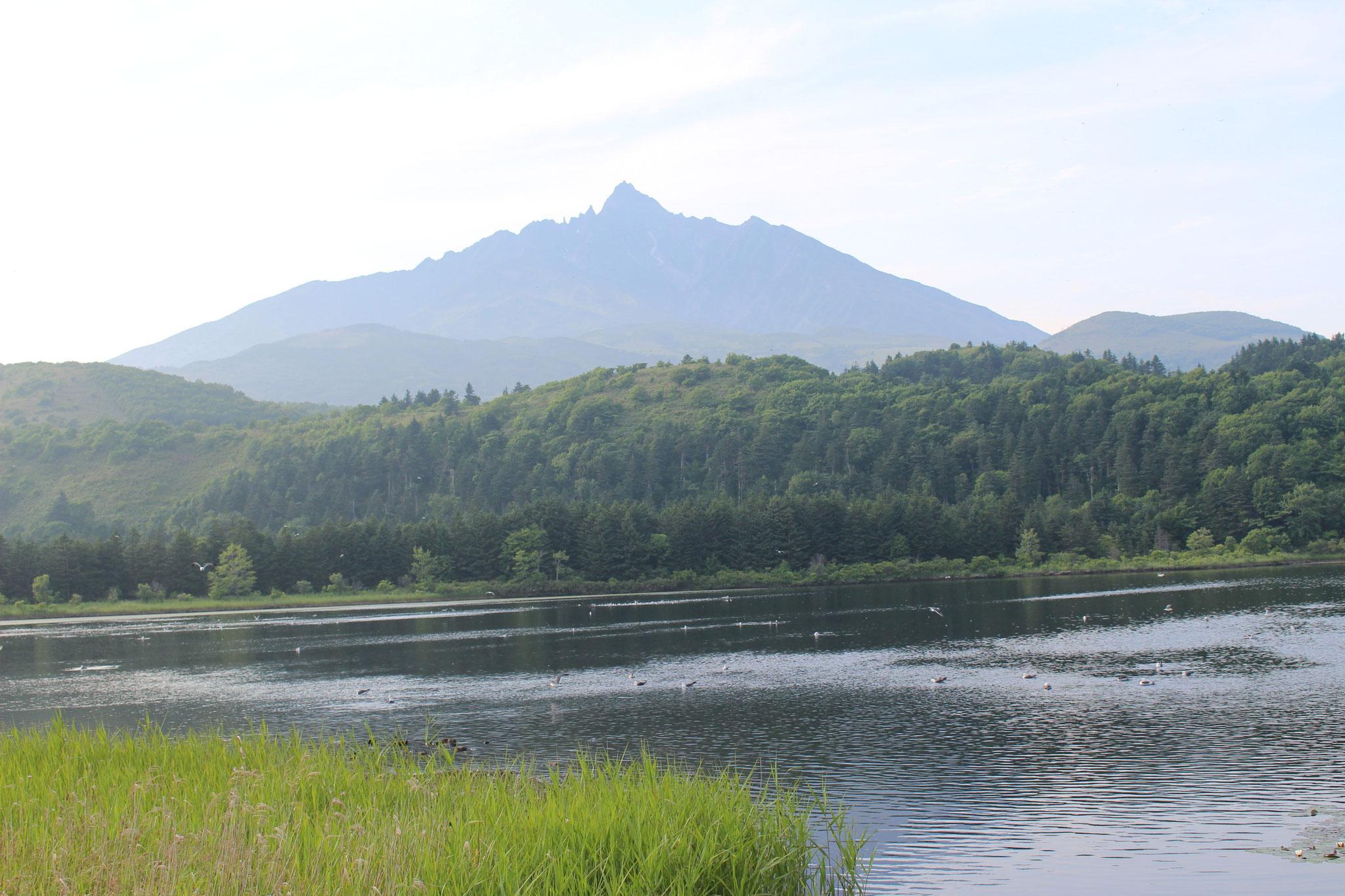 利尻富士は島の、どの角度からも見えます。