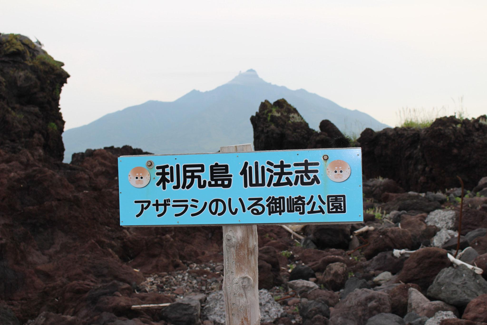 利尻島 仙法志「利尻富士が見えます」