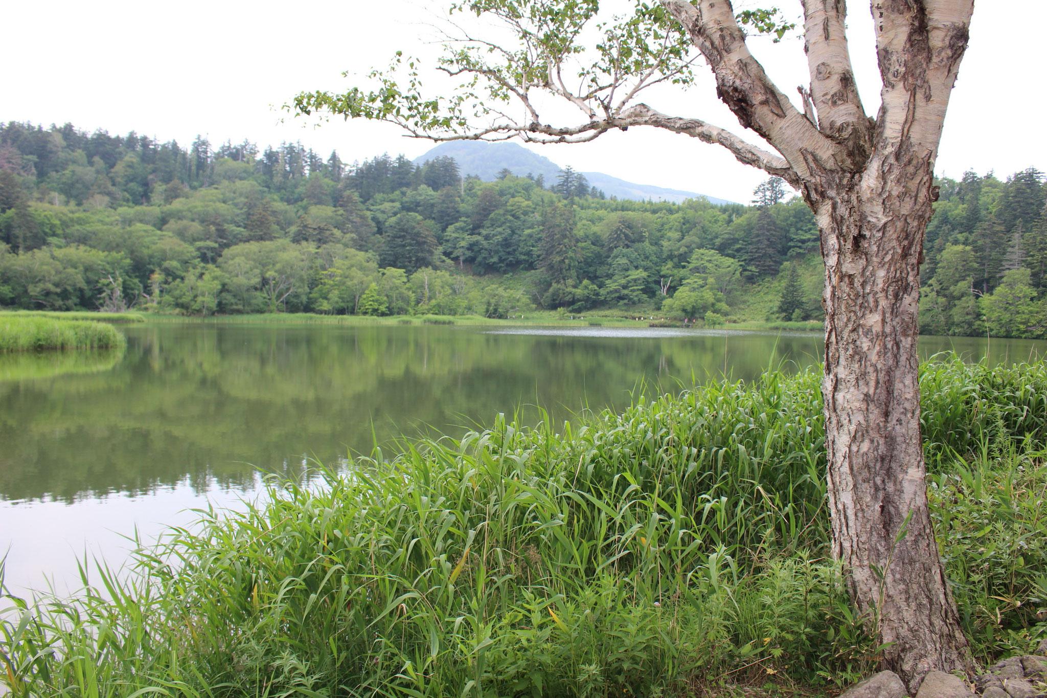 姫沼には朝早いので観光客はあまり見えません。