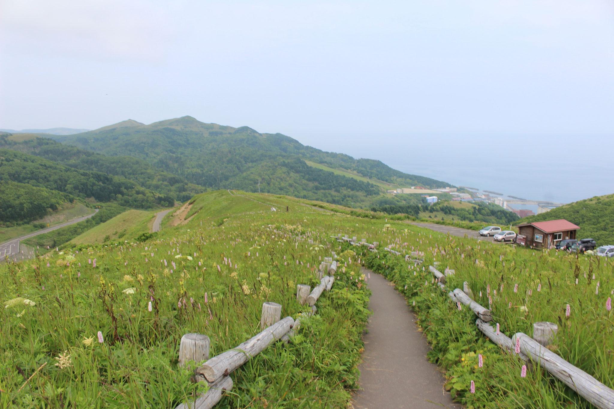 礼文島山岳コース