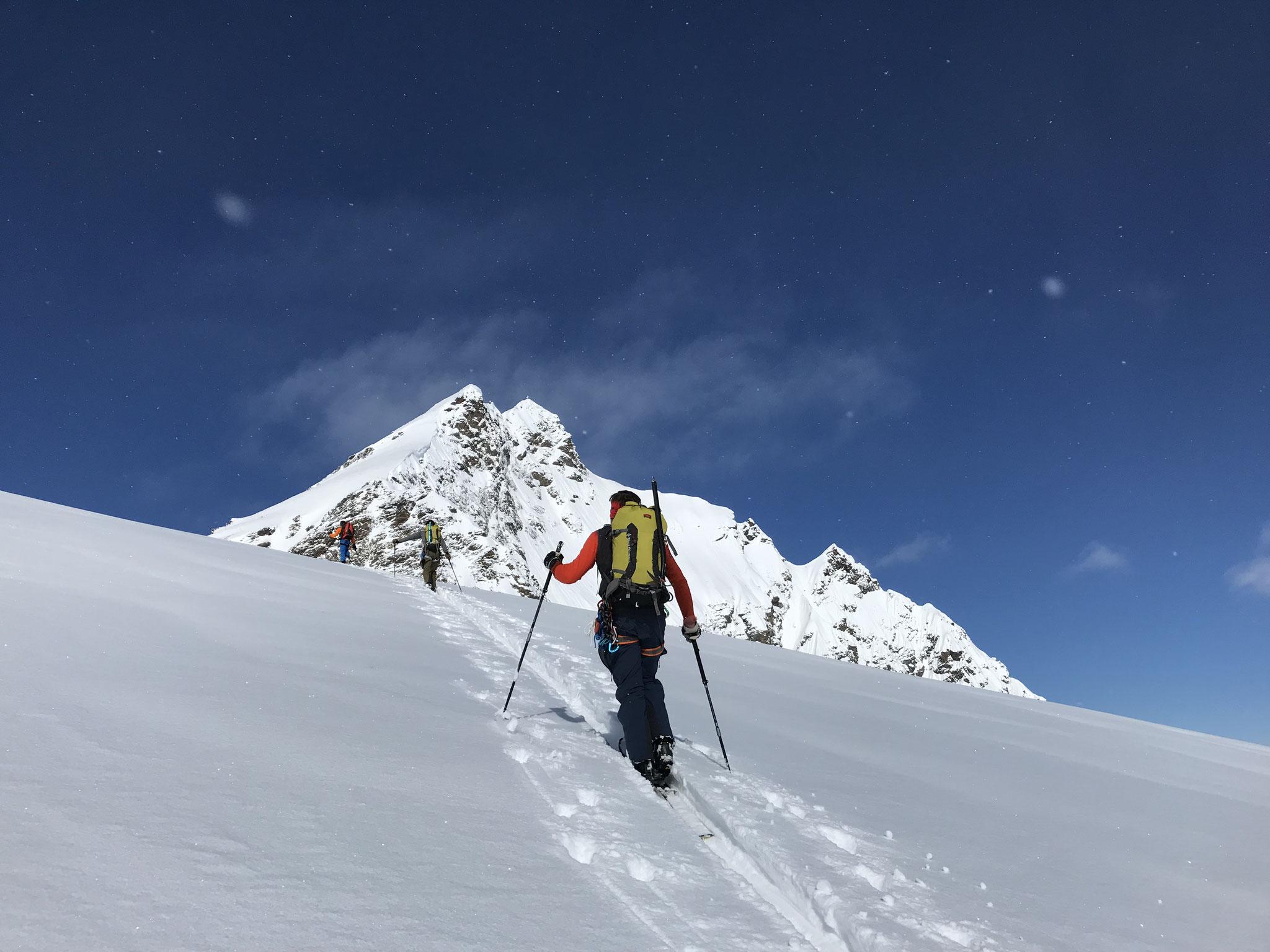 Im Aufstieg zum Silvrettahorn