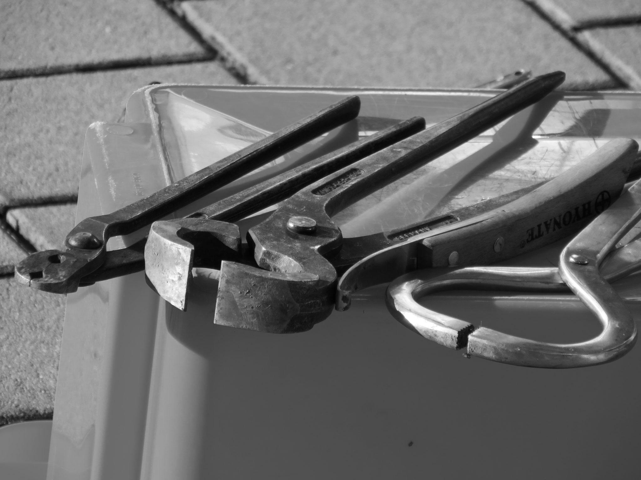 Instrumente zur Untersuchung der Hufe