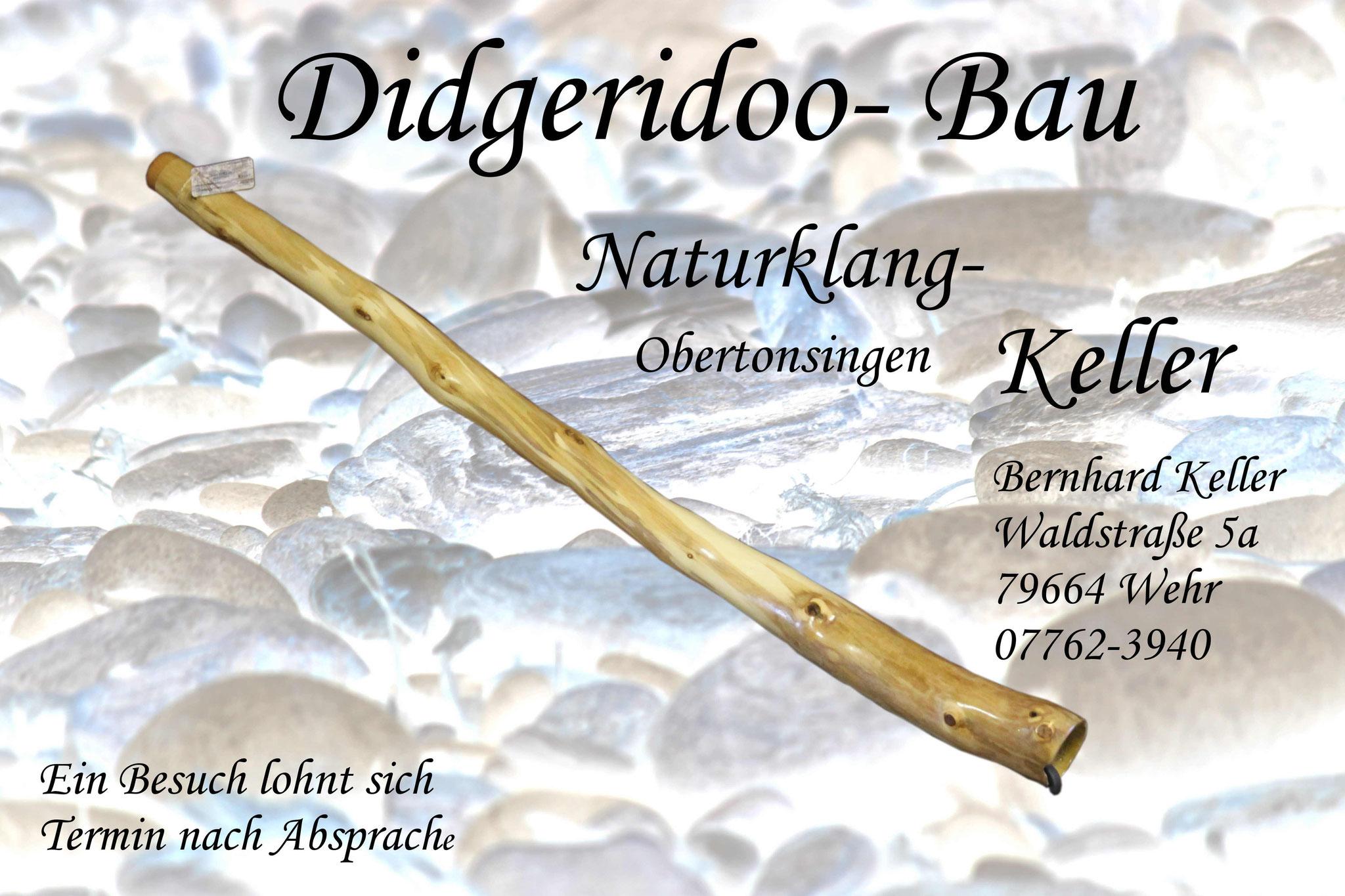 """""""Rübenzahl"""" in D - Stechpalme - Länge 155cm -  >Soundprobe<"""