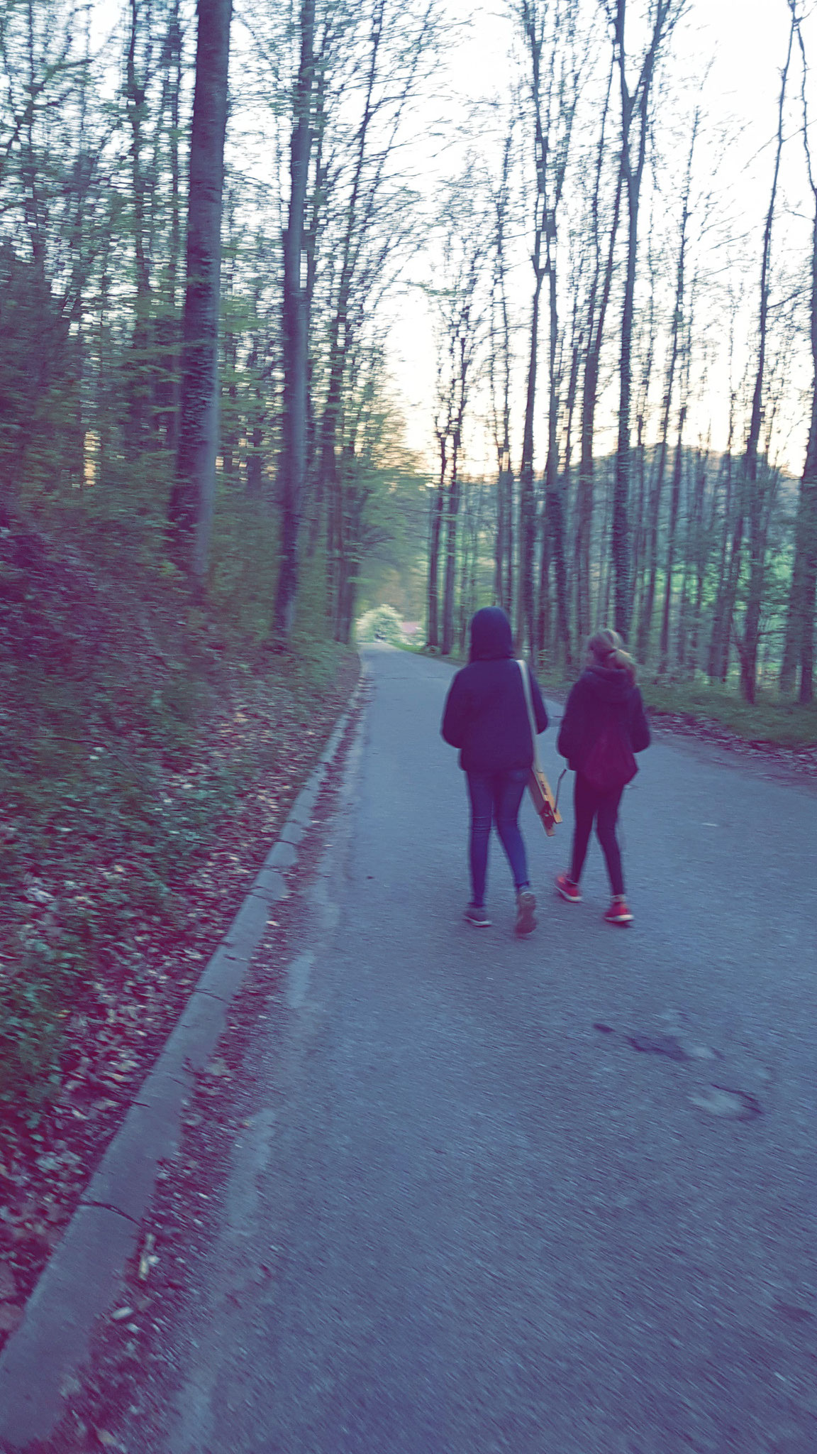 Rätschen auf dem Weg Richtung Frauenholzhof