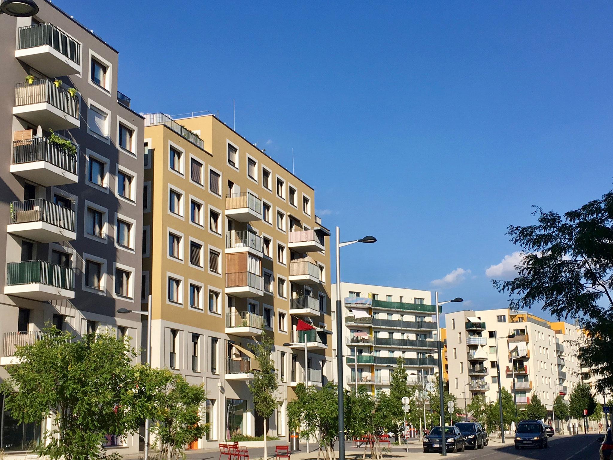 Wohnhäuser von AWG und Johannes Tovatt, Freiraum von 3:0 Landschaftsarchitektur ©Felicitas-Konecny