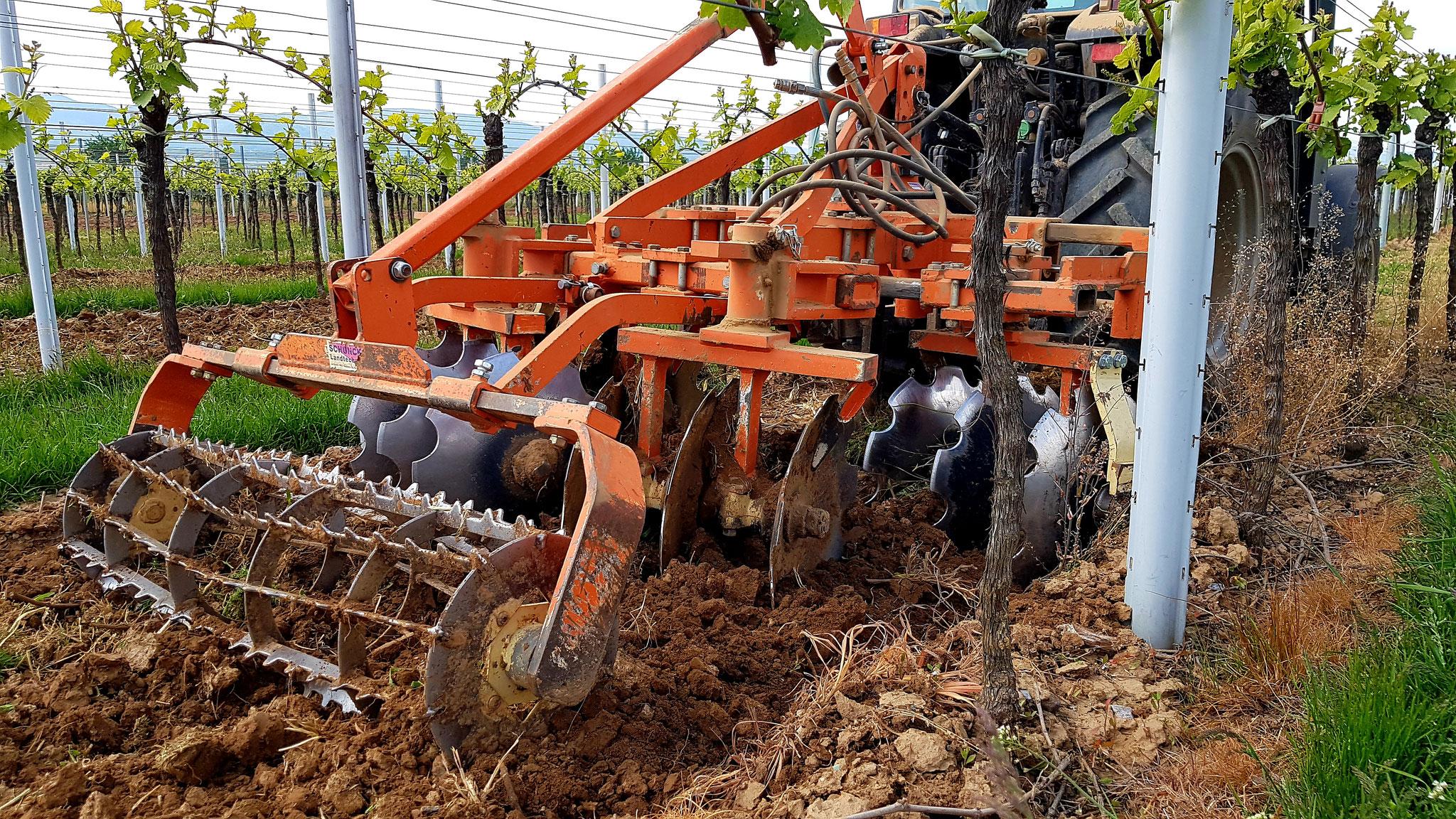 Bodenbearbeitung mit Scheibenegge