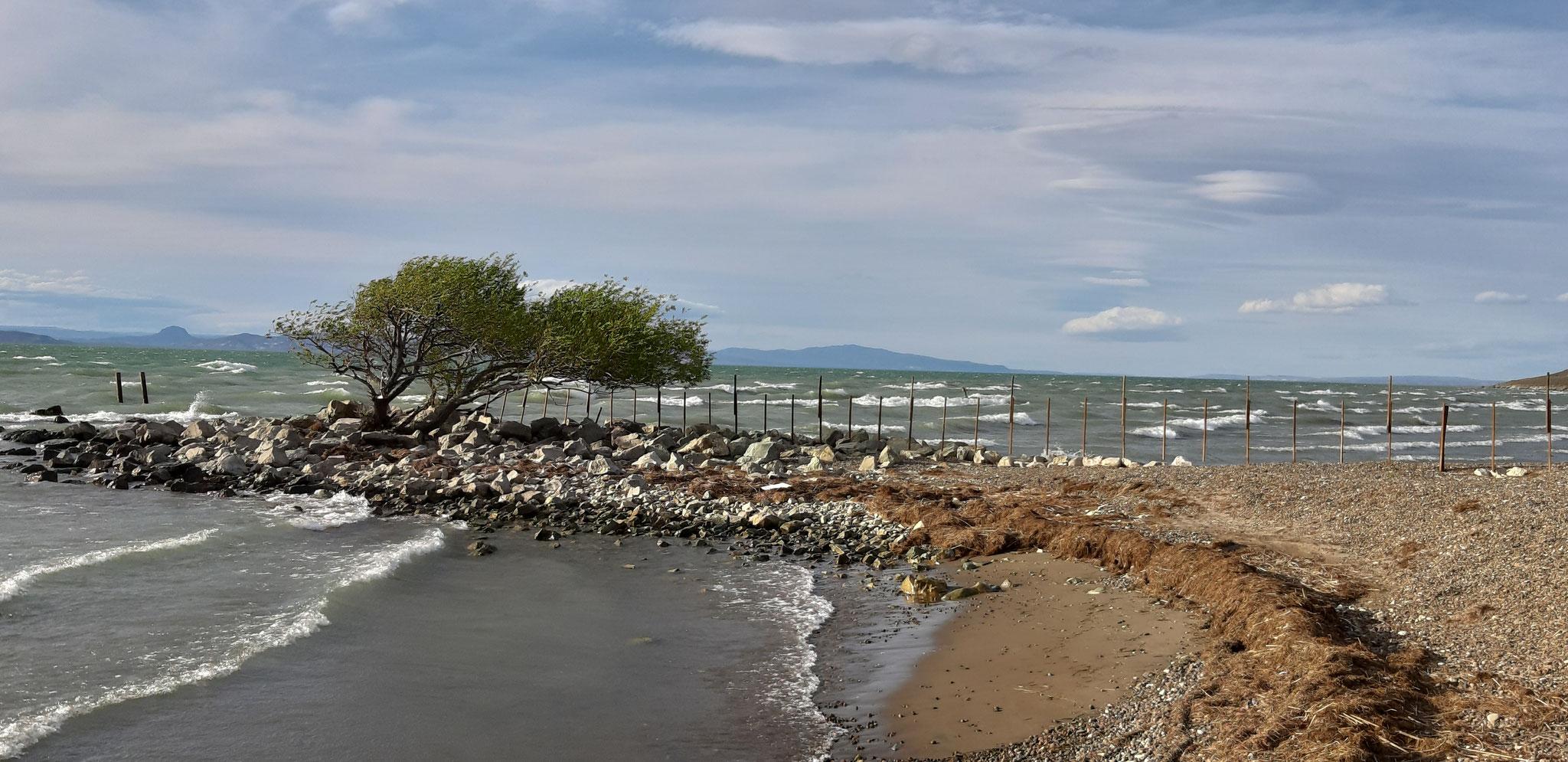 Übernachtungsplatz am Lago Musters