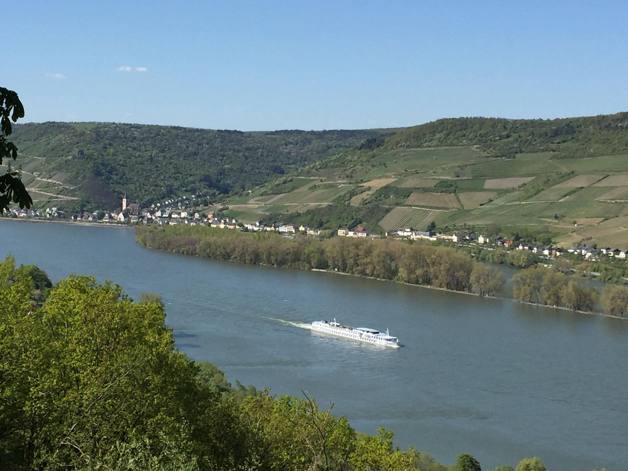 Schiffahrt auf dem Rhein