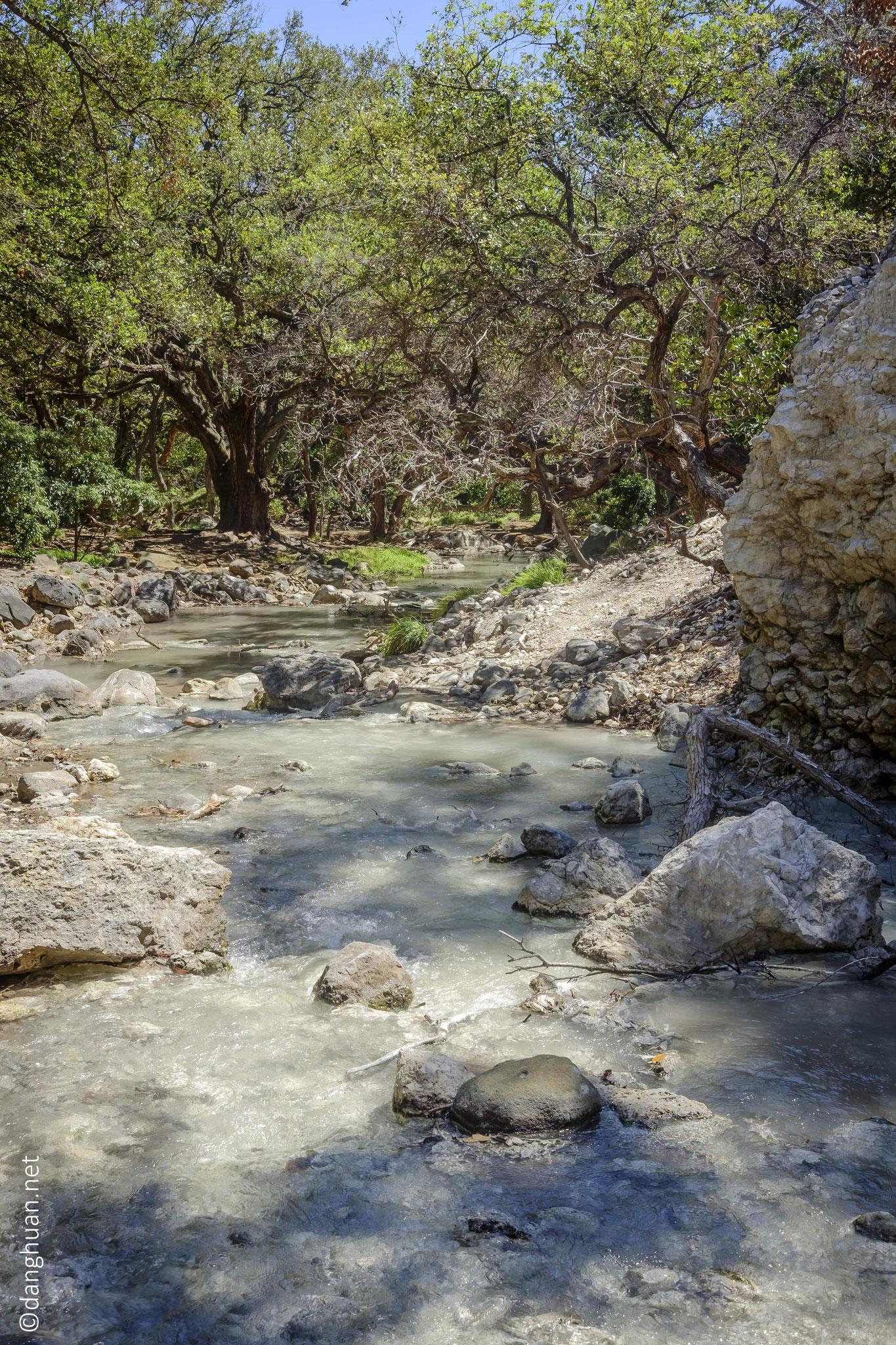 Piscines thermales naturelles dans le parc