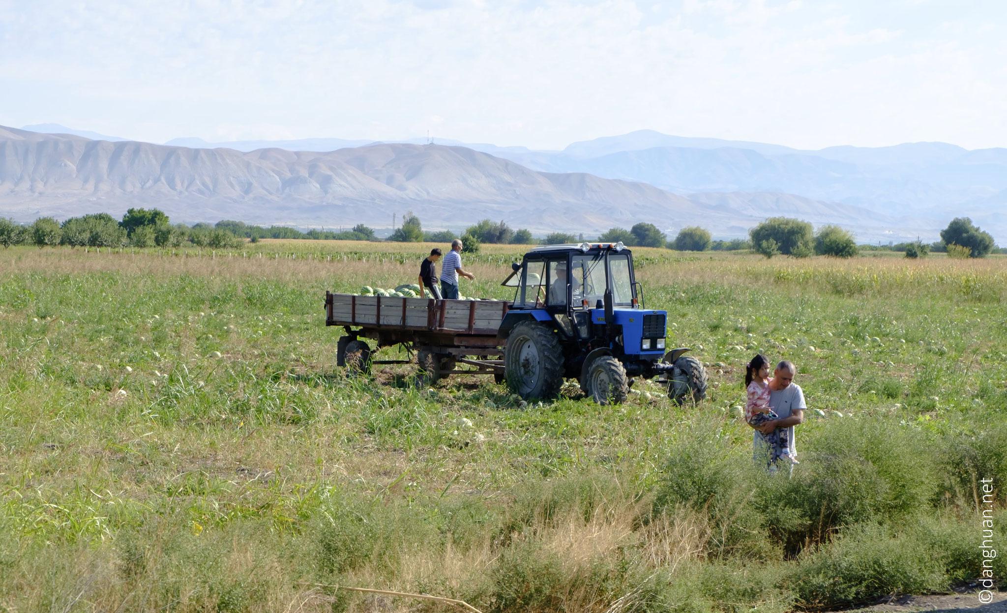 et sont actuellement conservés au Matenadaran d'Erevan