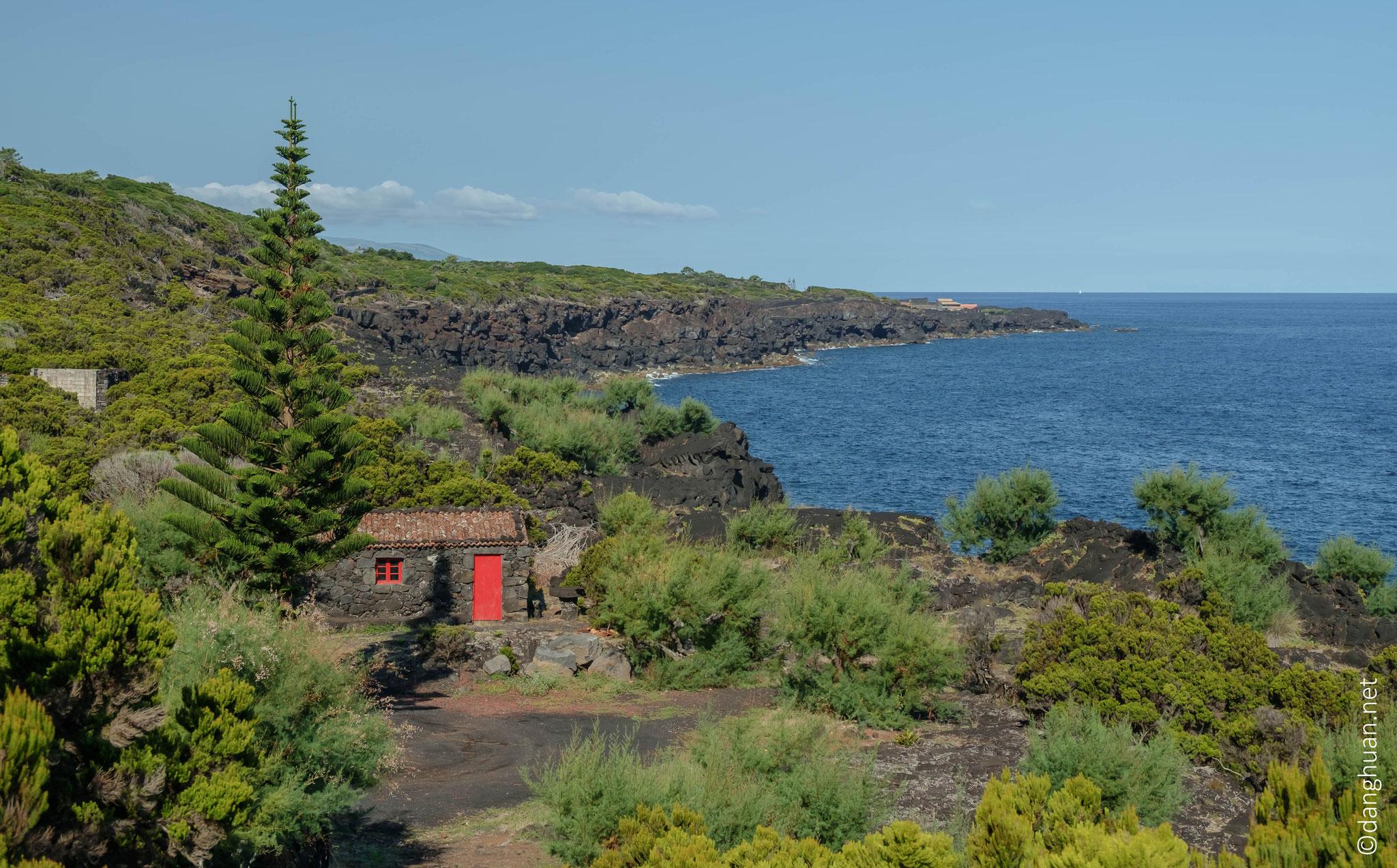 Pico - Randonnée côtière entre les hameaux, les vignes et les laves pétrifiées jusqu'à Santana