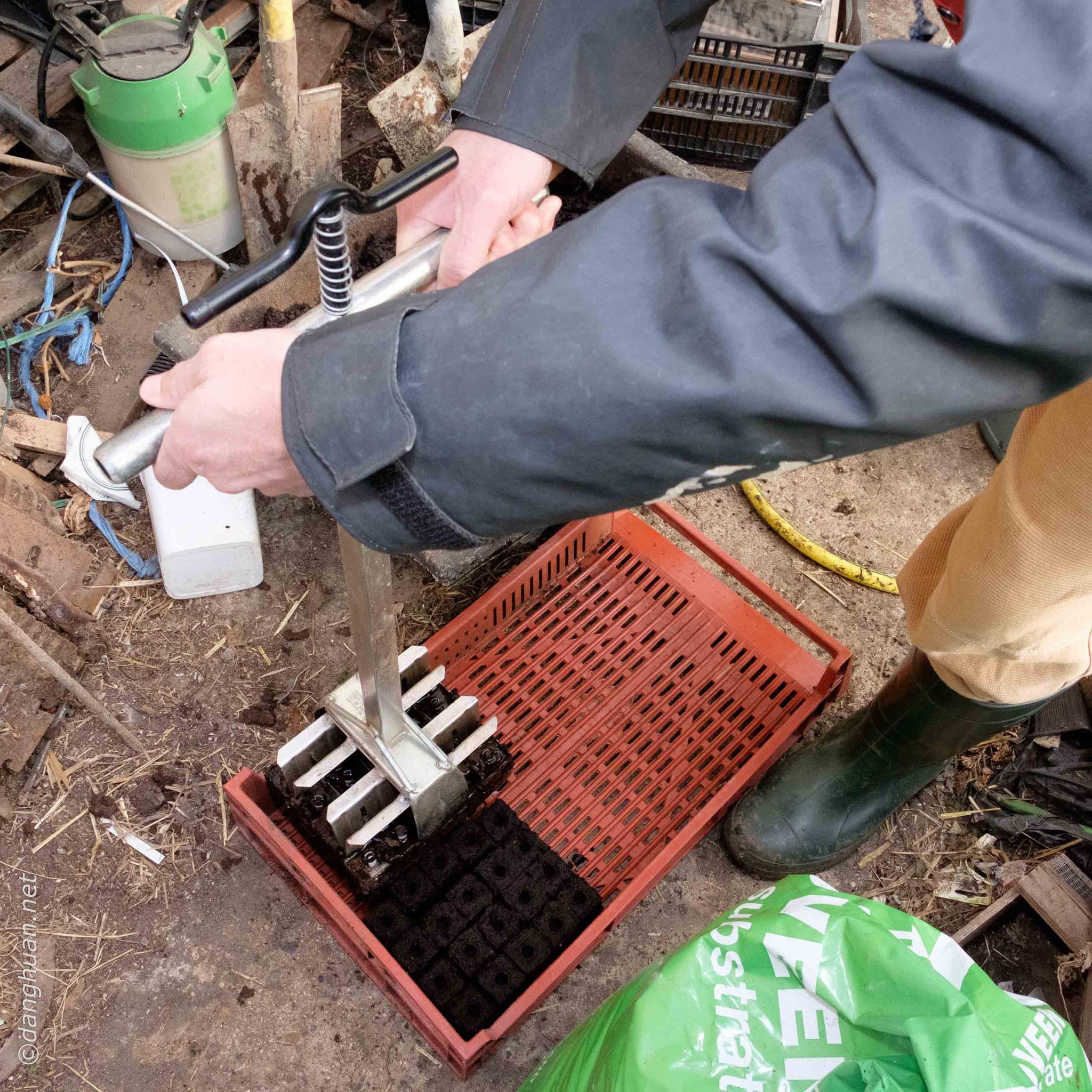 Préparation du semis