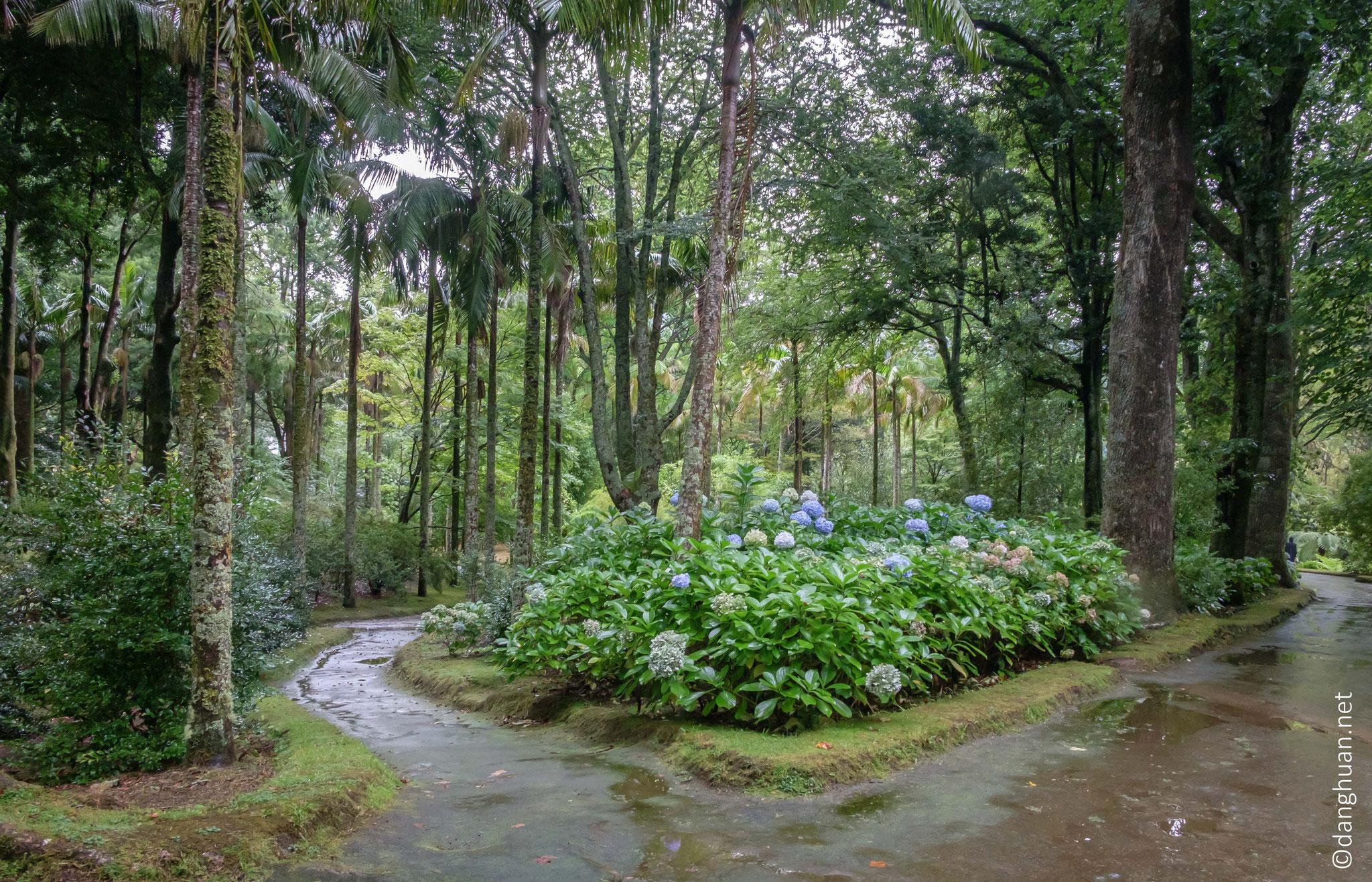 Jardin Terra Nostra