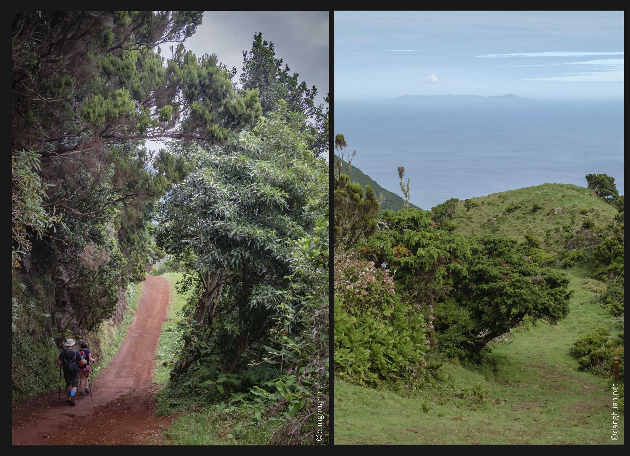 """Descente de la crête """"Serra do Topo"""" sur la côte Nord par le chemin des pèlerins"""